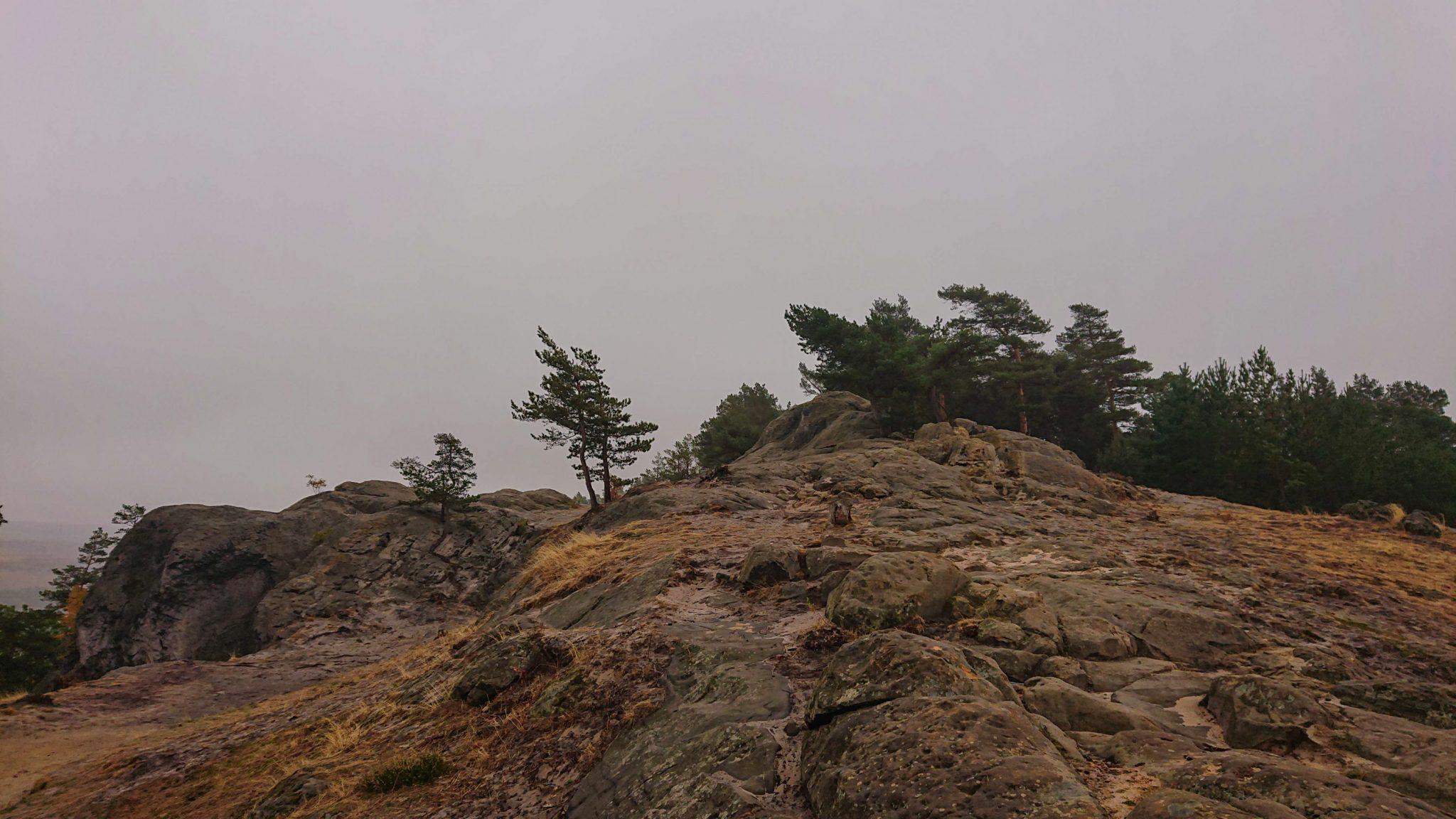 Rundwanderung auf der Blankenburger Teufelsmauer, Felsformation, wolkig und nieseliges Wetter, Beginn des Wanderwegs Blankenburger Teufelsmauer