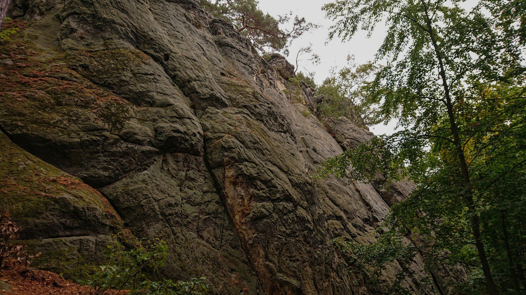Rundwanderung auf der Blankenburger Teufelsmauer, riesige Felsformation und Beginn des angrenzenden Laubwaldes