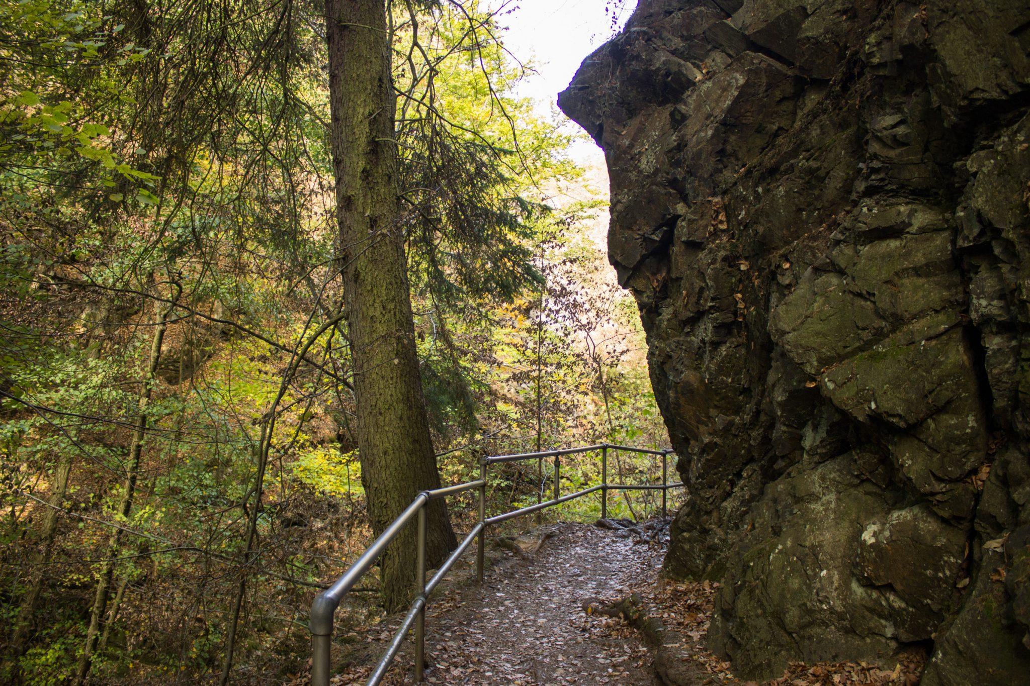 Rundwanderung Thale nach Treseburg - über Hexentanzplatz, Bodetal und Roßtrappe, Wanderweg im Bodetal, durch Metallgitter abgesichert, großer Felsen neben Wanderpfad, überall schöner dichter Wald