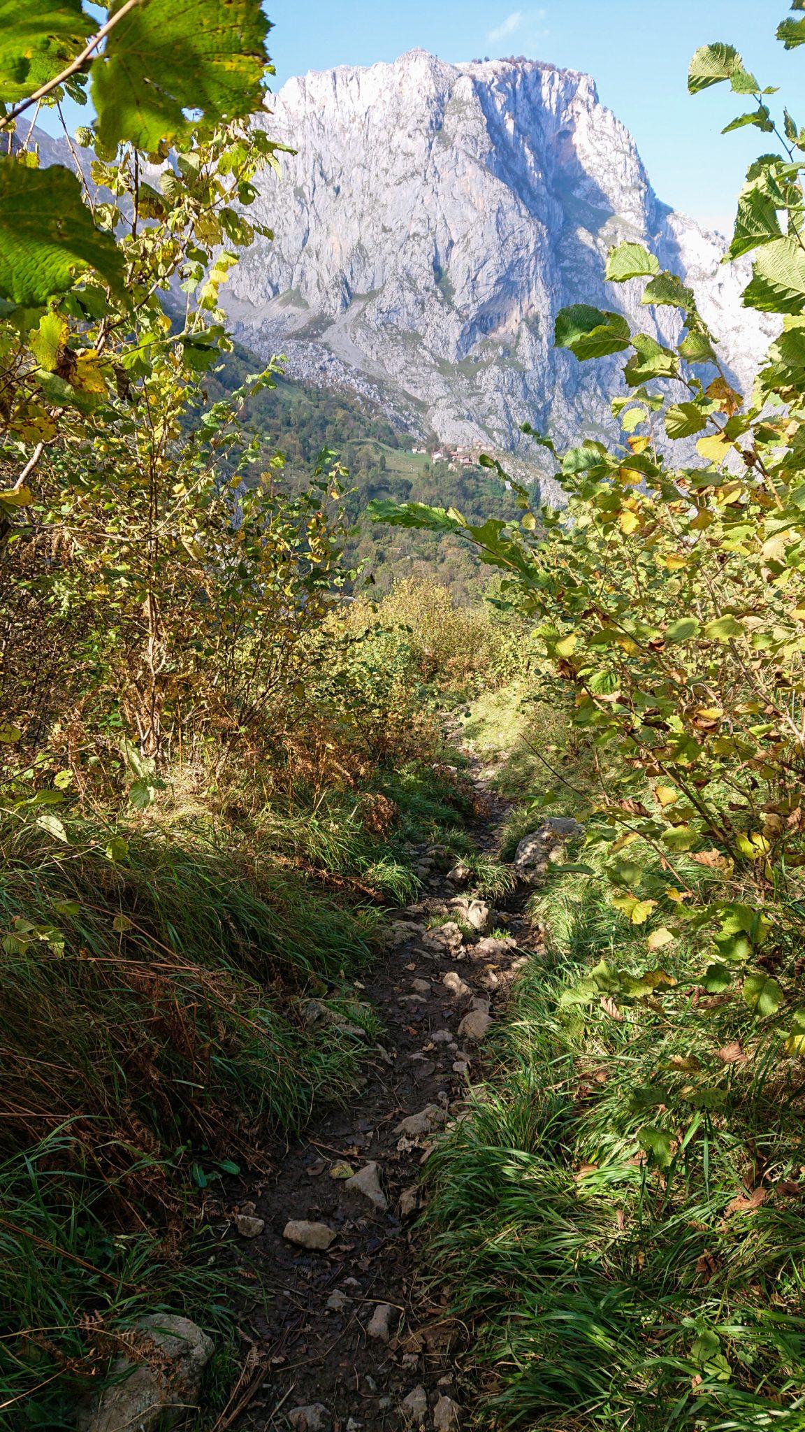 Wanderung Poncebos nach Bulnes in den Picos de Europa, schmaler Wanderpfad zwischen hohen Felswänden, saftig grüne Wiese, Steine und Geröll, tolles Wanderwetter