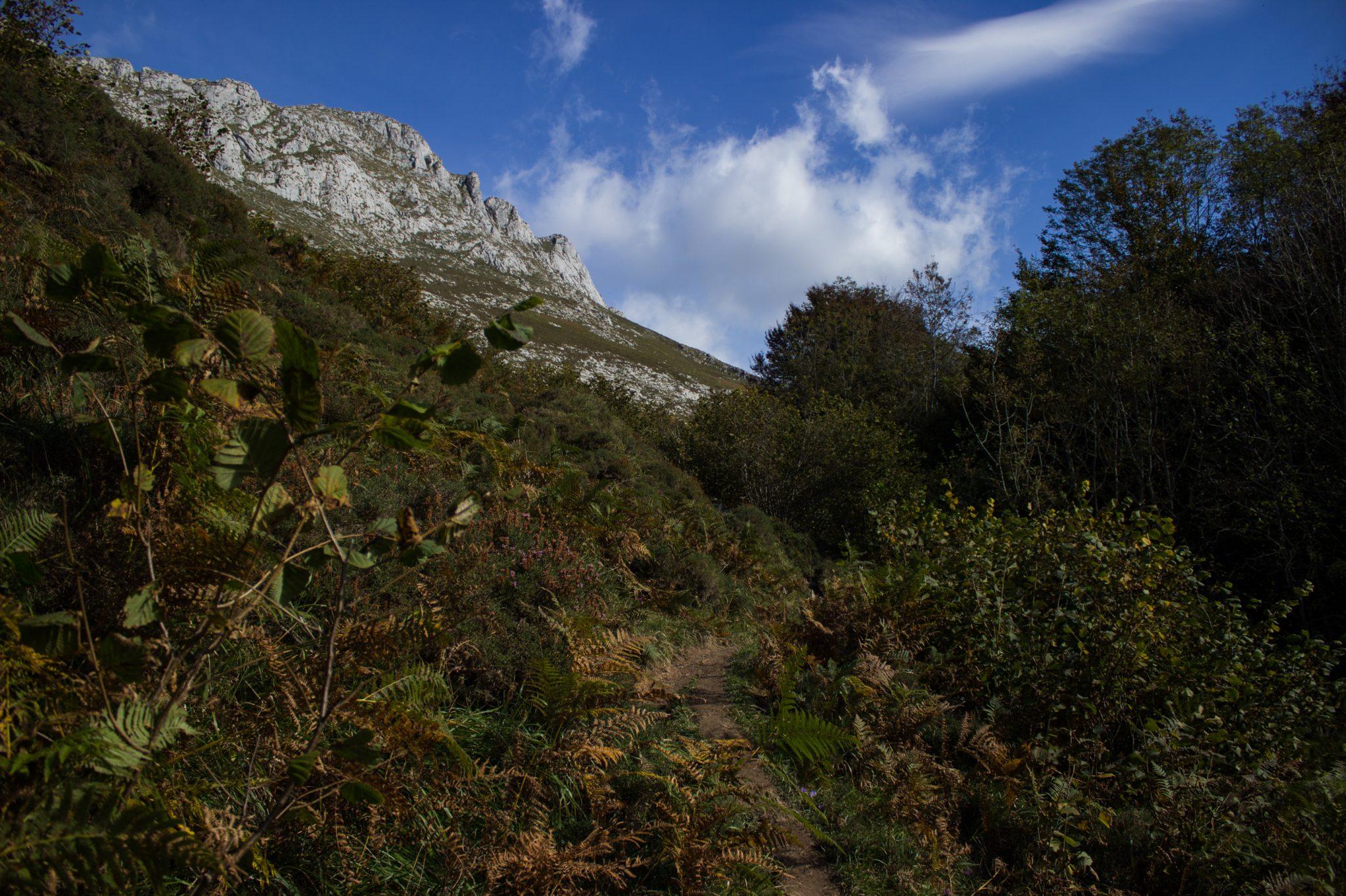 Wanderung Poncebos nach Bulnes in den Picos de Europa, schmaler Wanderpfad, saftig grüne Wiese, Steine und Geröll, tolles Wanderwetter