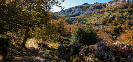 Wanderung Mirador de Ordiales Picos de Europa Spanien,  Herbst, Herbststimmung, Wanderweg, Bäume, Berge