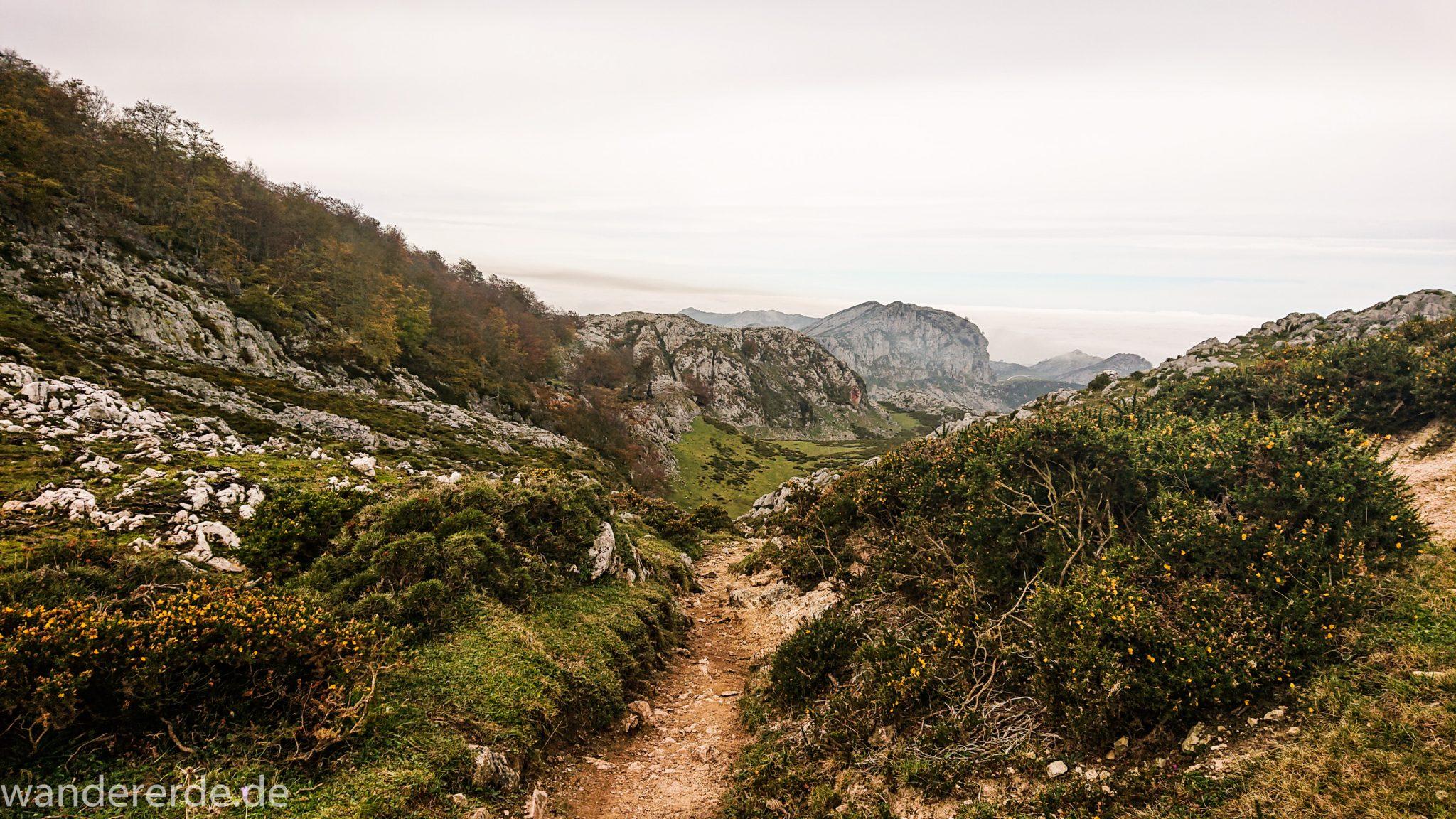 Wanderung Vega de Ario Picos de Europa Spanien, Aussicht bis zum atlantischen Ozean und Strand, schmaler Wanderpfad, Büsche, Steine und Berge, Wanderregion in  Nordspanien
