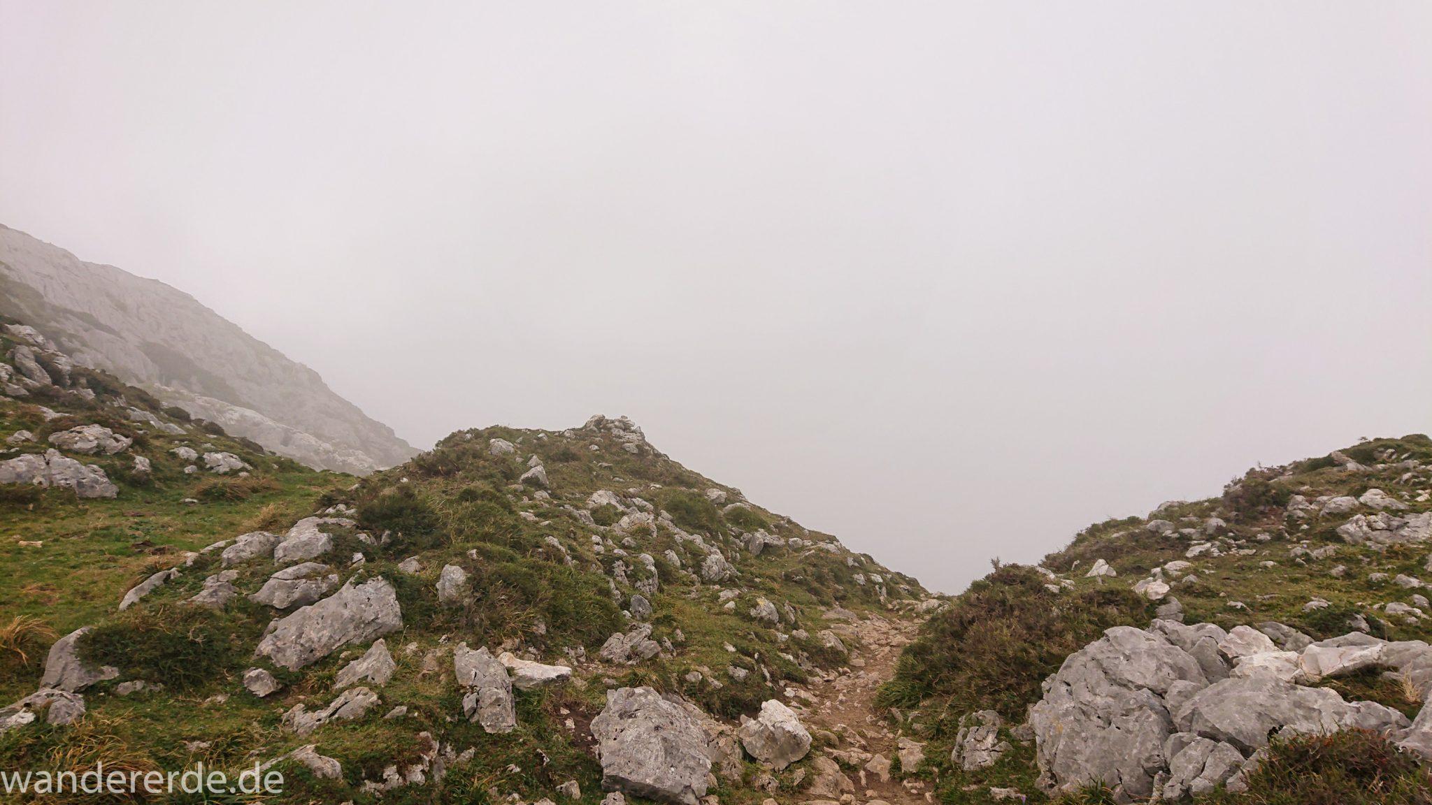 Wanderung Vega de Ario Picos de Europa Spanien, dichte Wolken, Bergregion in Nordspanien, Wandern, grüne Wiesen
