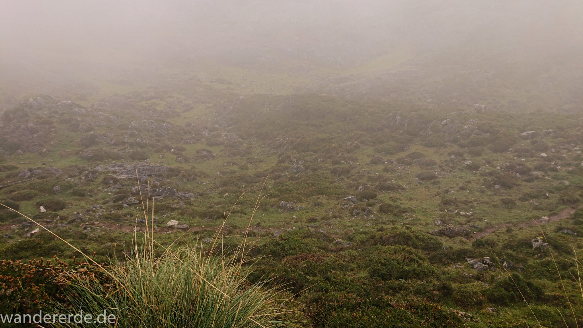 Wanderung Vega de Ario Picos de Europa Spanien, dichte Wolken, Bergregion in Nordspanien, Wandern, zerklüftete Felsen, Steine, schmaler Wanderpfad, atmosphärisch, grüne Wiese, Wolken ziehen auf, Grasbüschel