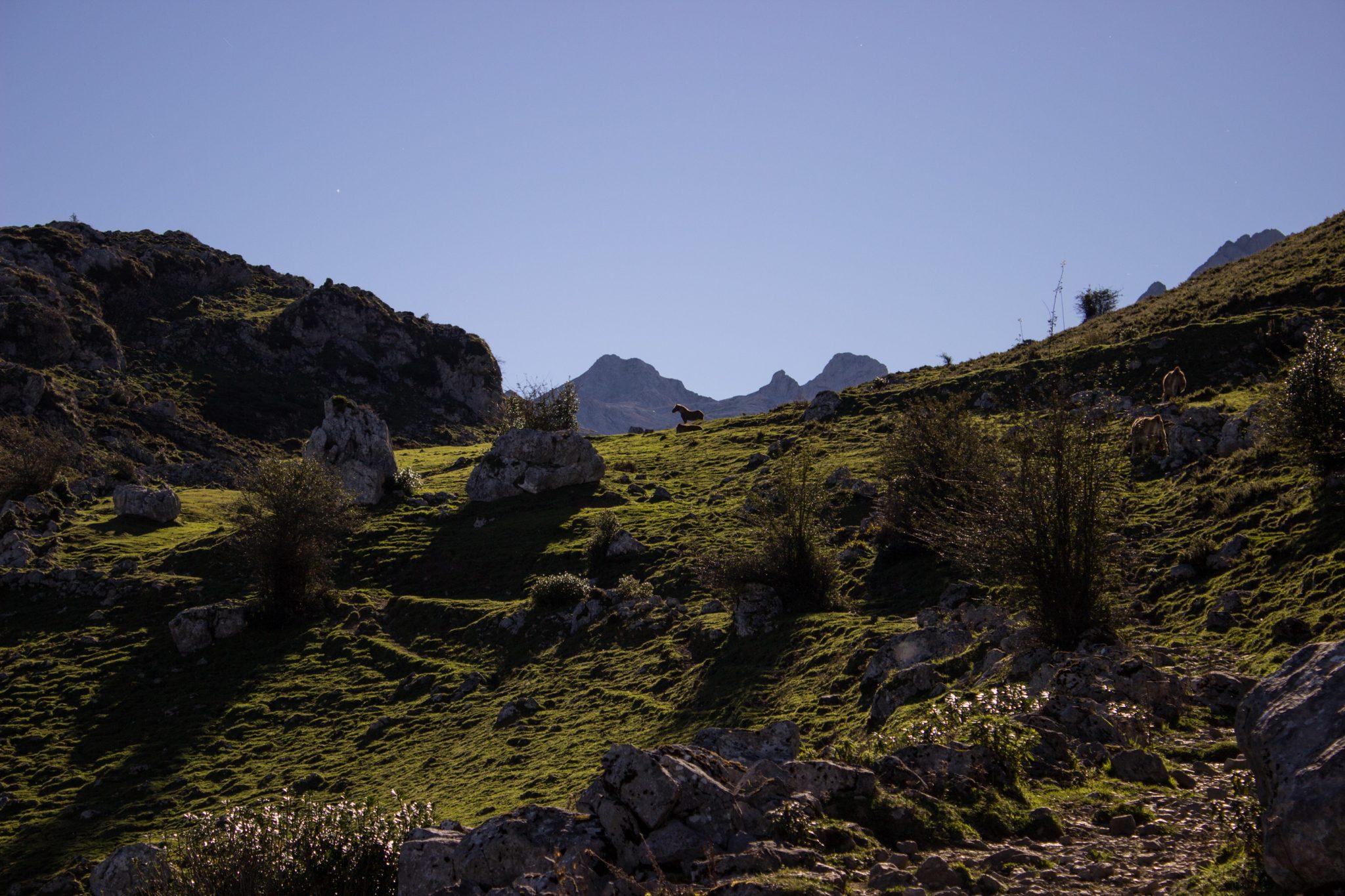 Wanderung Mirador de Ordiales Picos de Europa Spanien, Berge, Felsen