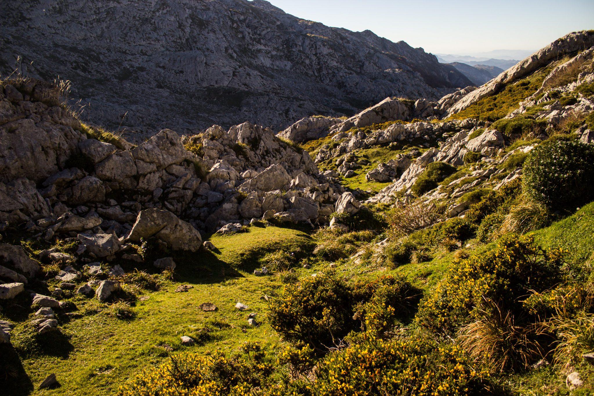 Wanderung Mirador de Ordiales Picos de Europa Spanien, saftig grüne Wiesen, Felsen und Steine, tollstes Wanderwetter Ende Oktober