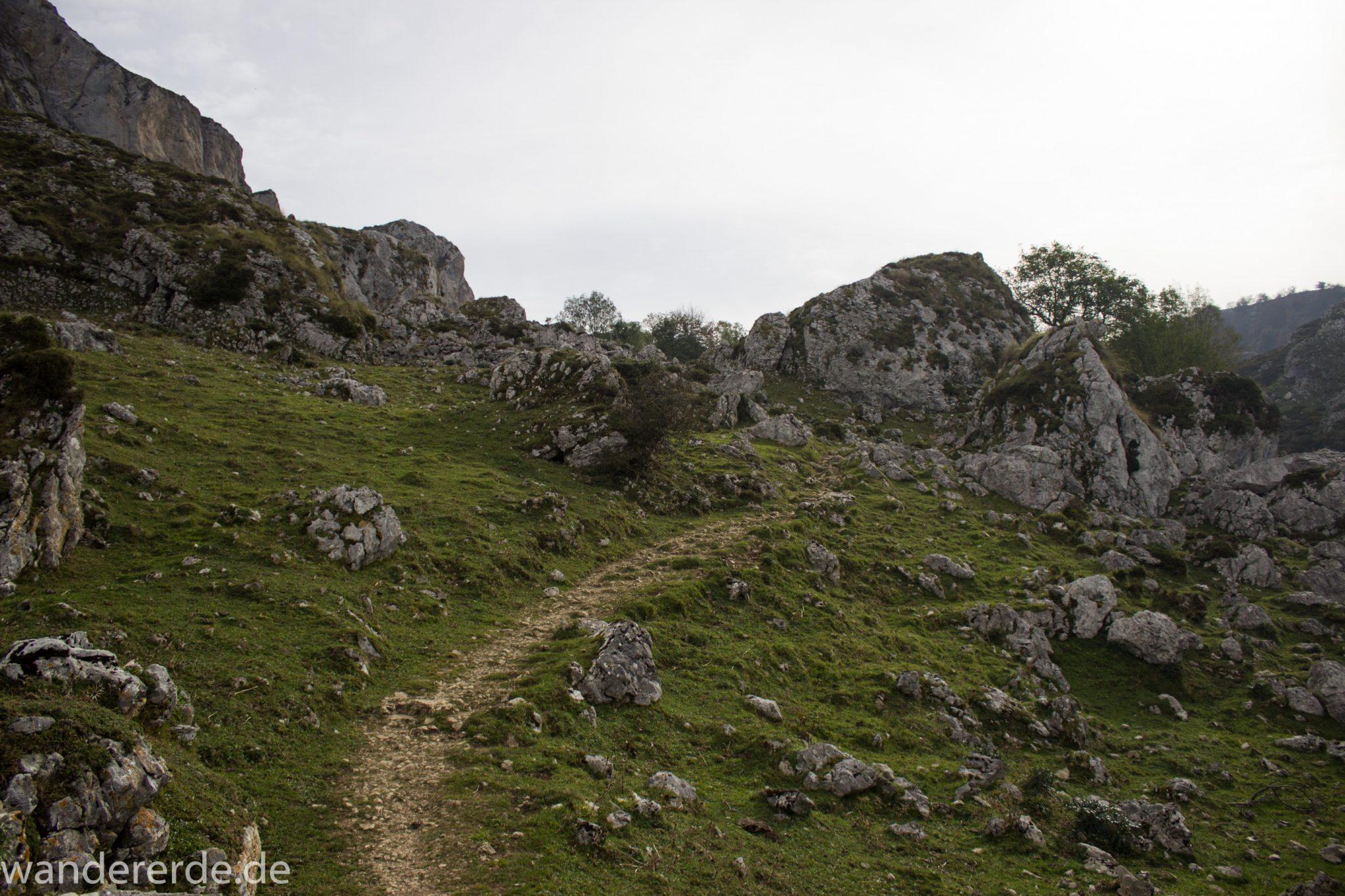 Wanderung Vega de Ario Picos de Europa Spanien, Kieselsteine, Berge, Wolken, kurze Sicht, grüne Wiese, zerklüftete Felsen, Bergregion, schmaler Wanderpfad