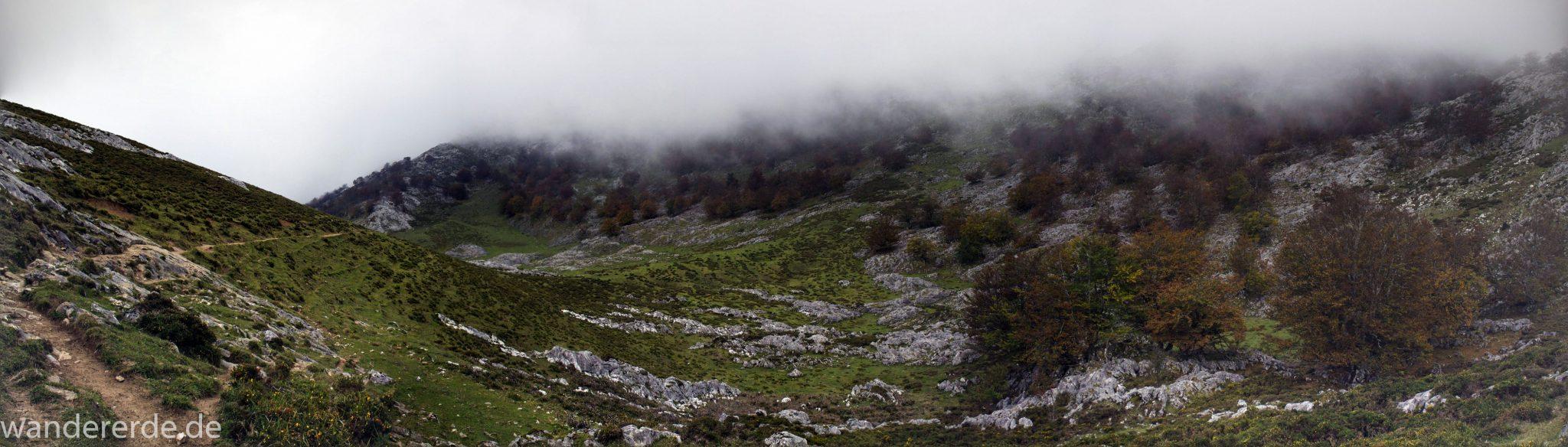 Wanderung Vega de Ario Picos de Europa Spanien, Berge, Wolken, grüne Wiese, zerklüftete Felsen, Bergregion, schmaler Wanderpfad, viele Bäume, Wanderregion Nordspanien