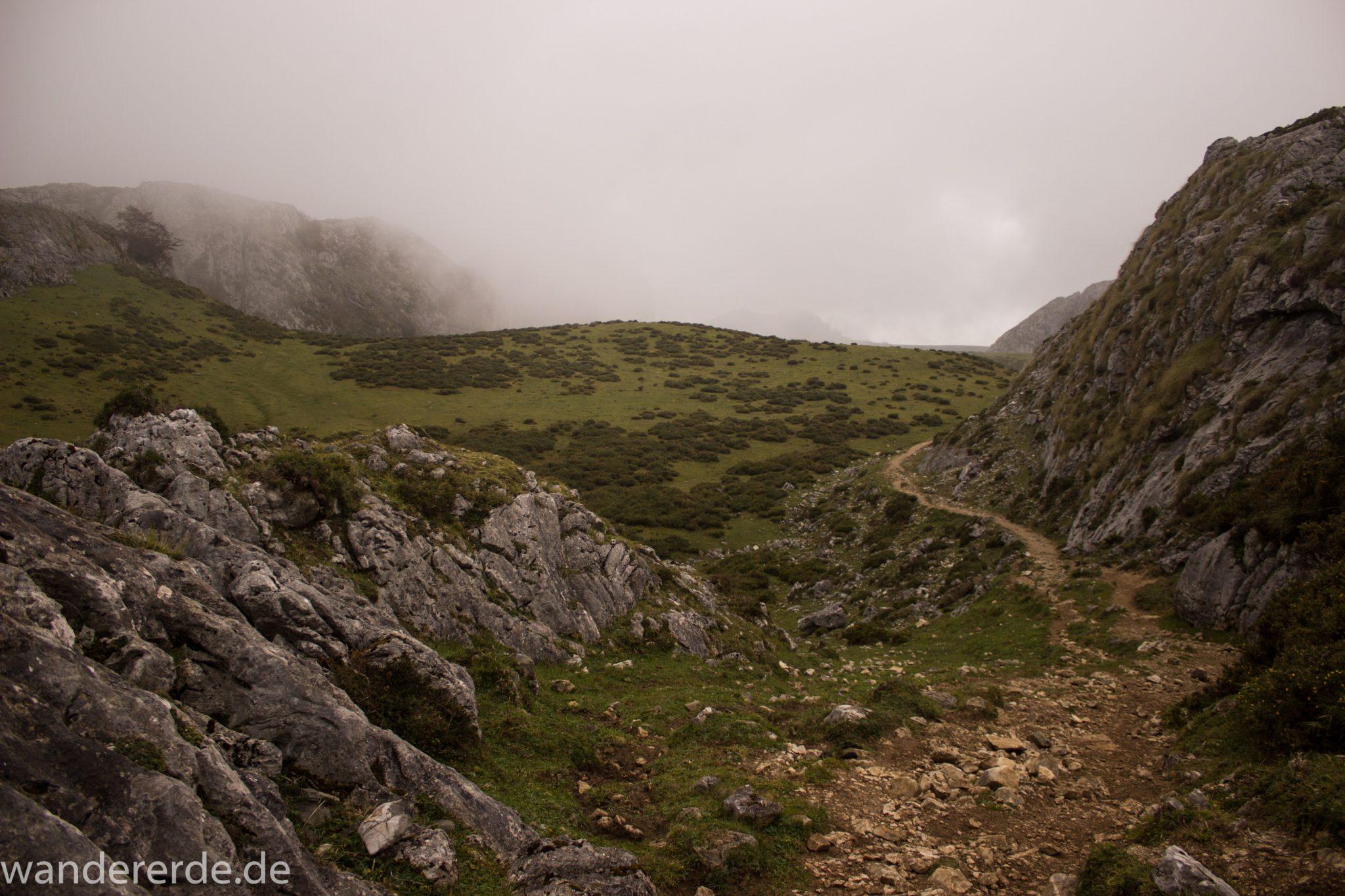 Wanderung Vega de Ario Picos de Europa Spanien, dichte Wolken, Bergregion in Nordspanien, Wandern, zerklüftete Felsen, Steine, schmaler Wanderpfad, atmosphärisch, saftig grüne Wiese