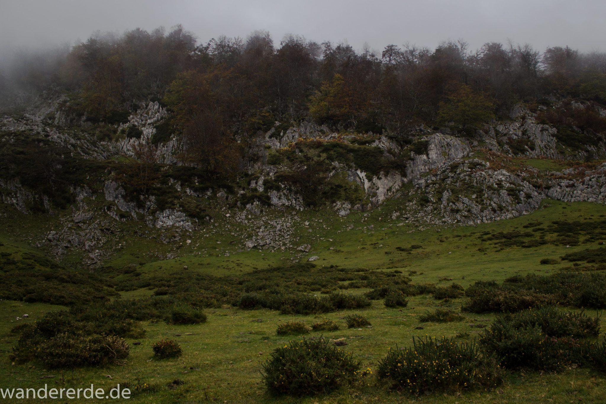 Wanderung Vega de Ario Picos de Europa Spanien, dichte Wolken, Bergregion in Nordspanien, Wandern, atmosphärisch, saftig grüne Wiese, Büsche und Bäume, zerklüftete Felsen