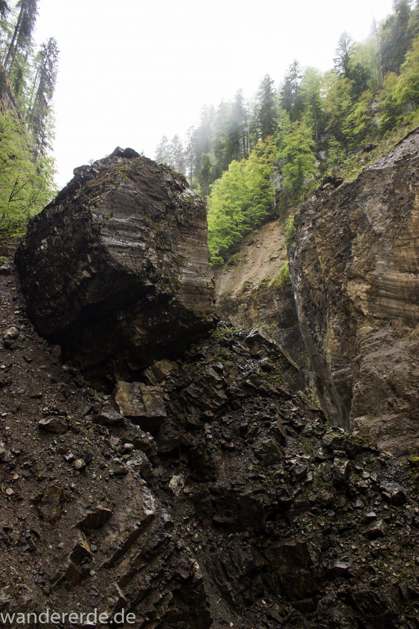 Wanderung durch die Breitachklamm im Allgäu, sehr hohe Felswände, tosende Breitach nach starkem Regen, Klamm umgeben von schönem Wald, Felsen im Fluss, Schneeschmelze im Allgäu, Wanderweg durch die Klamm, Erdrutsch in der Breitachklamm