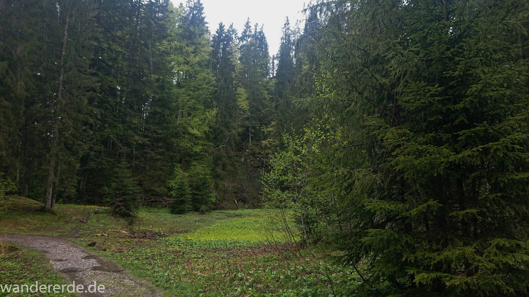 Wanderung bei der Breitachklamm im Allgäu, tosende Breitach nach starkem Regen, Fluss umgeben von schönem Wald, Wanderweg zum Waldhaus, Schneeschmelze im Allgäu