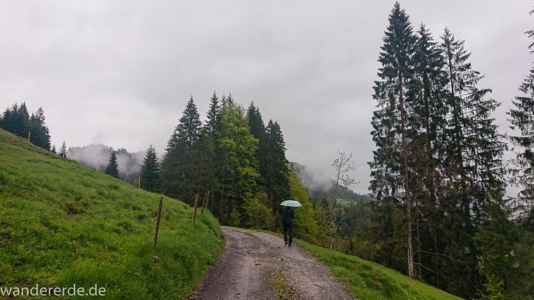 Wanderung bei der Breitachklamm im Allgäu, schöner Wald, saftige Wiesen, Wanderweg zum Waldhaus, schneebedeckte Berge in der Ferne