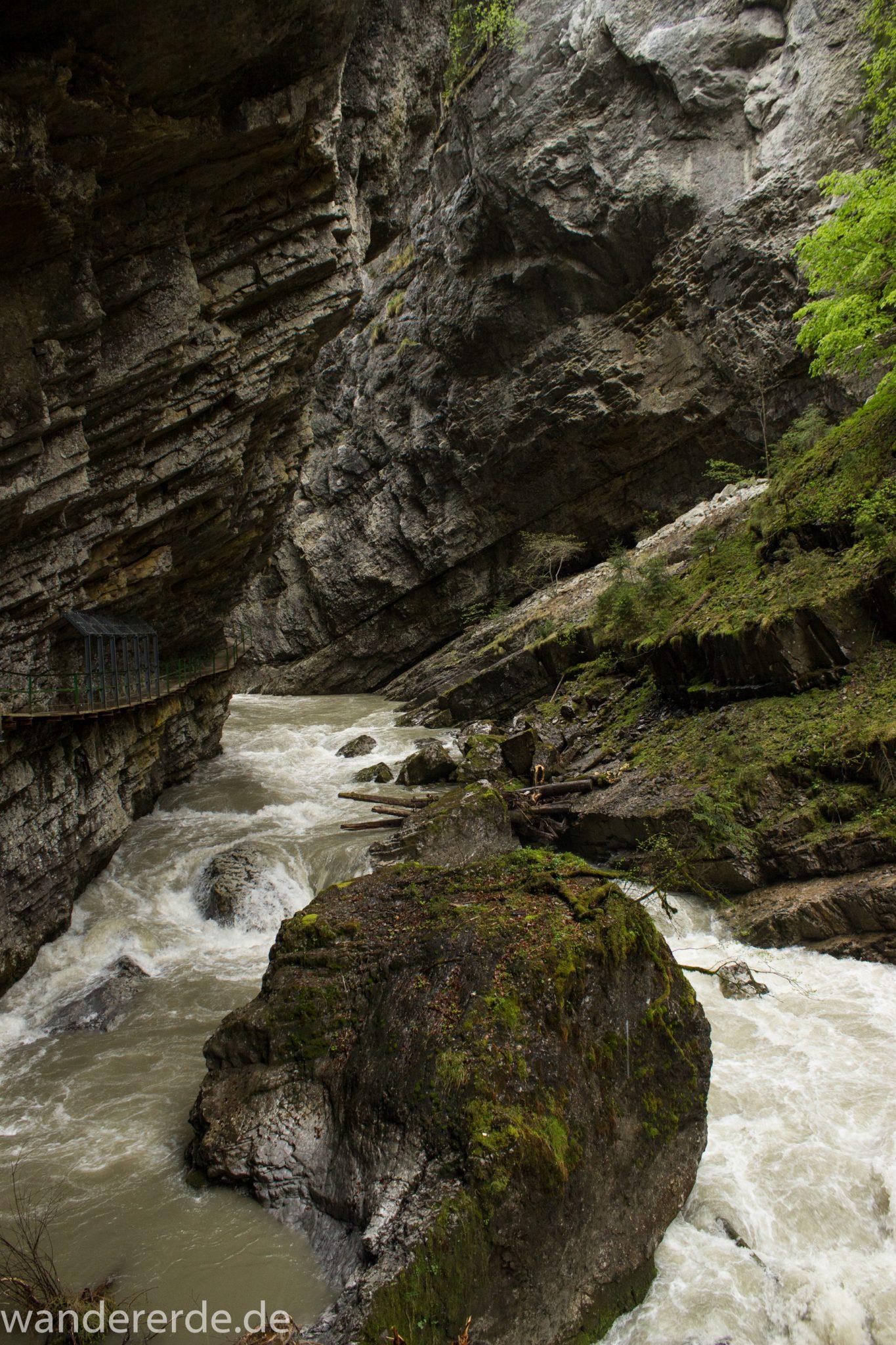 Wanderung durch die schmale und enge Breitachklamm im Allgäu, sehr hohe Felswände, tosende Breitach nach starkem Regen, Klamm umgeben von schönem Wald, Felsen im Fluss, Schneeschmelze im Allgäu, Wanderweg durch die Klamm