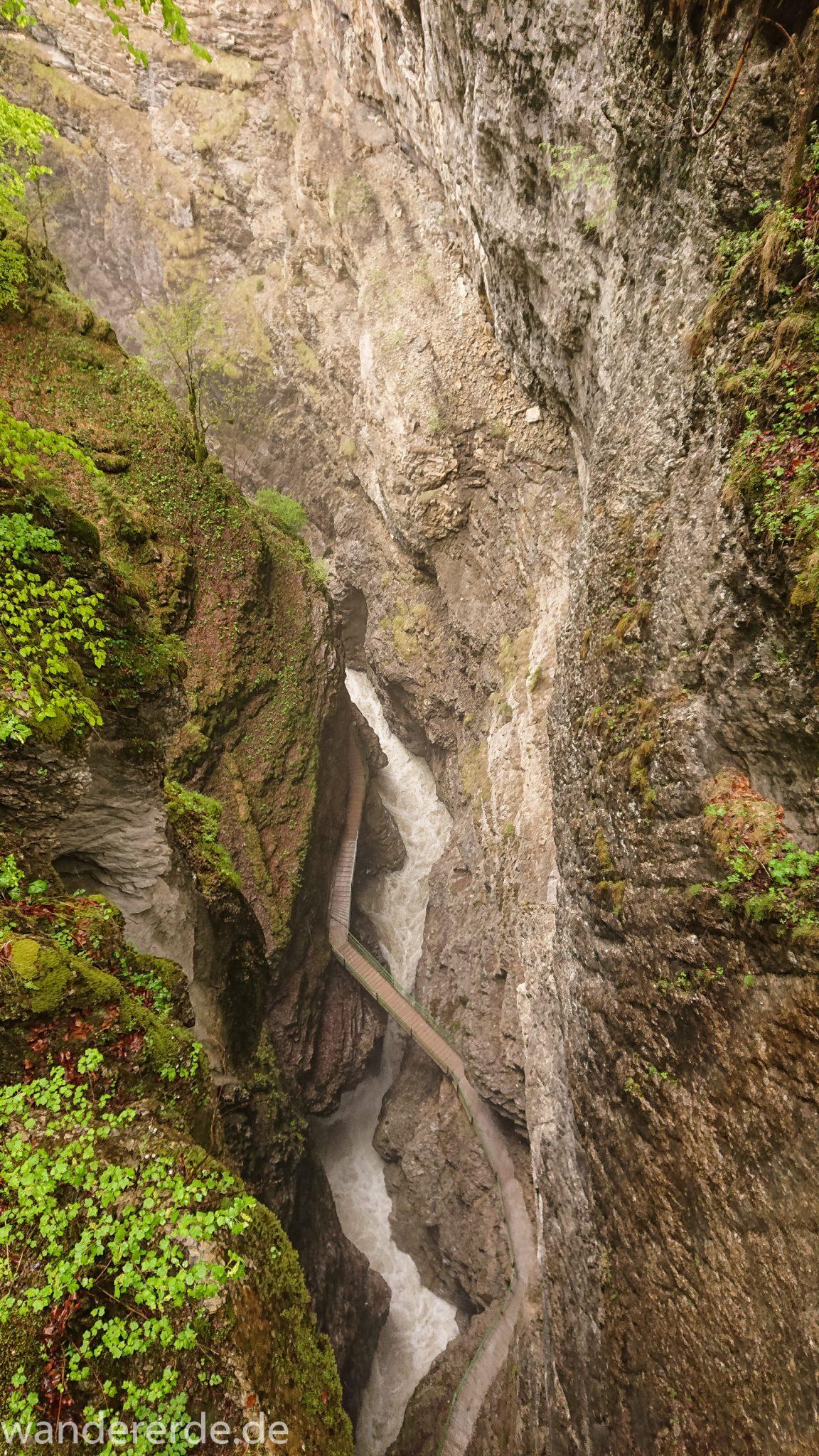 Wanderung durch die Breitachklamm im Allgäu, sehr hohe Felswände, tosende Breitach nach starkem Regen, Klamm umgeben von schönem Wald, Felsen im Fluss, Schneeschmelze im Allgäu, Wanderweg durch die Klamm