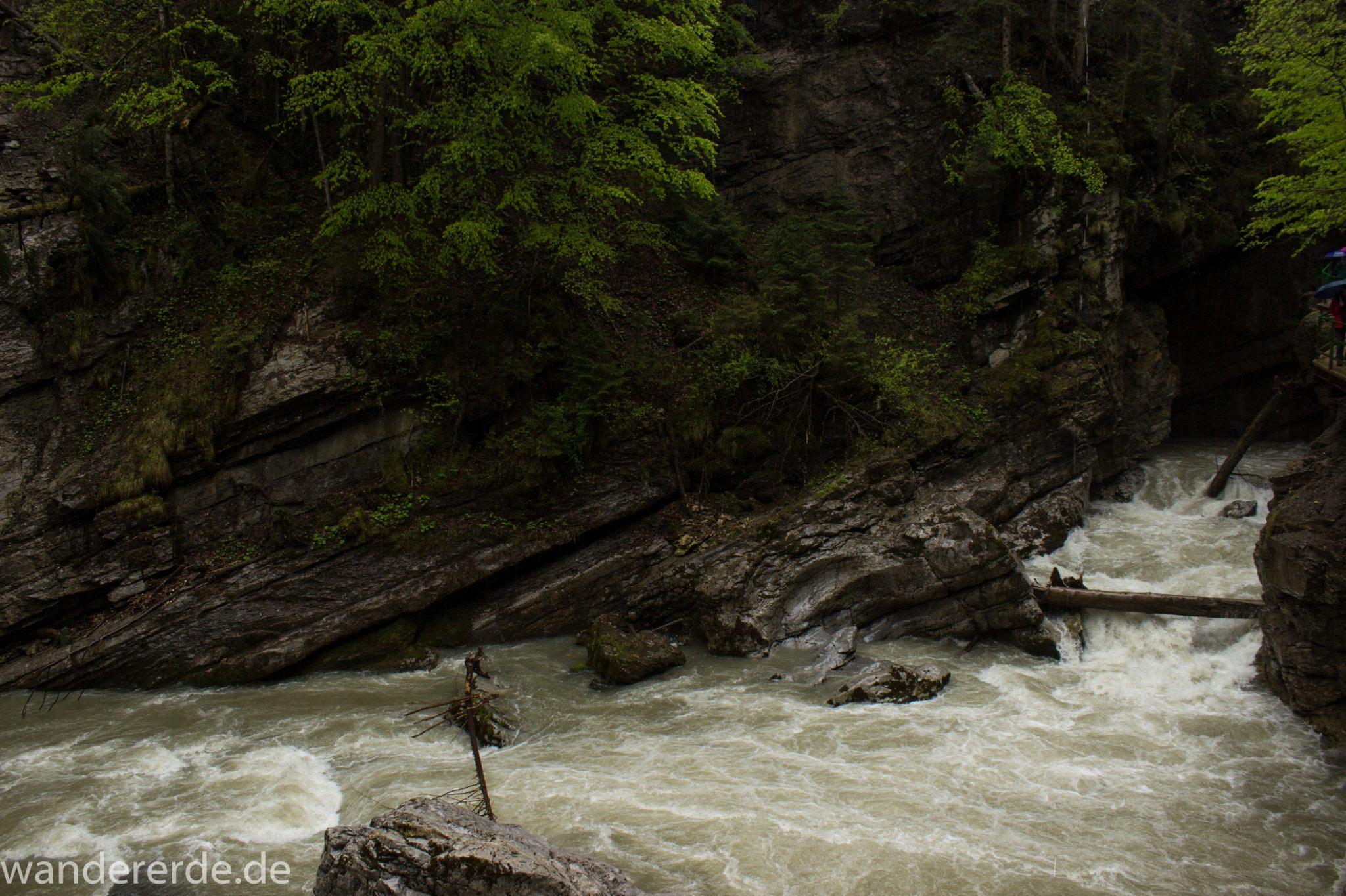 Wanderung durch die Breitachklamm im Allgäu, tosende Breitach nach starkem Regen, Klamm umgeben von schönem Wald, Felsen im Fluss, Schneeschmelze im Allgäu