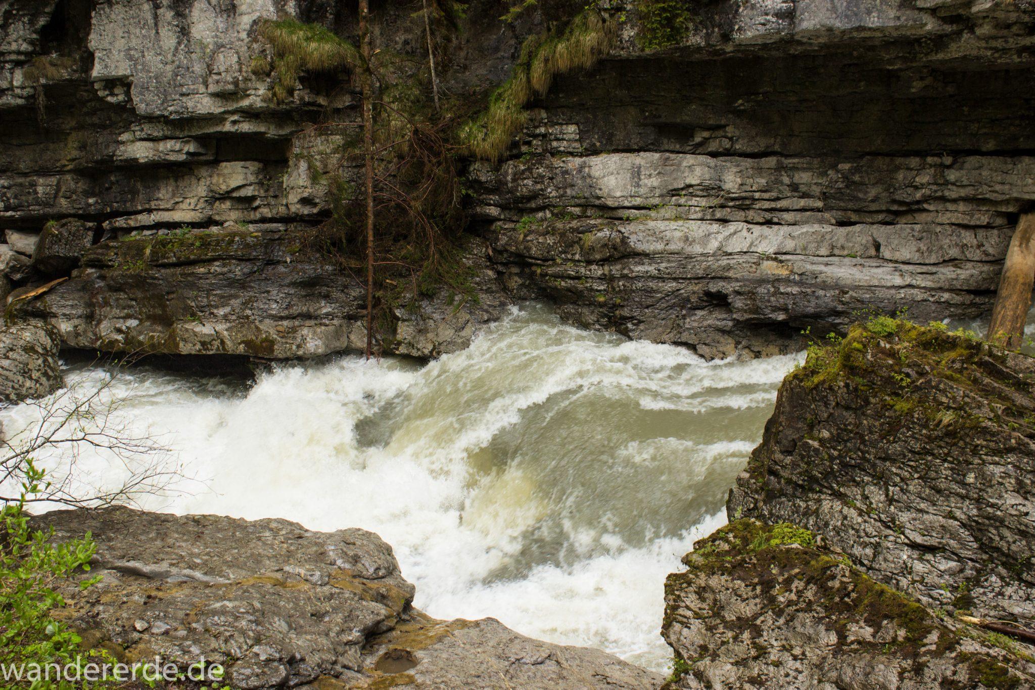 Wanderung durch die Breitachklamm im Allgäu, hohe Felswände, tosende Breitach nach starkem Regen, Klamm umgeben von schönem Wald, Felsen im Fluss, Schneeschmelze im Allgäu