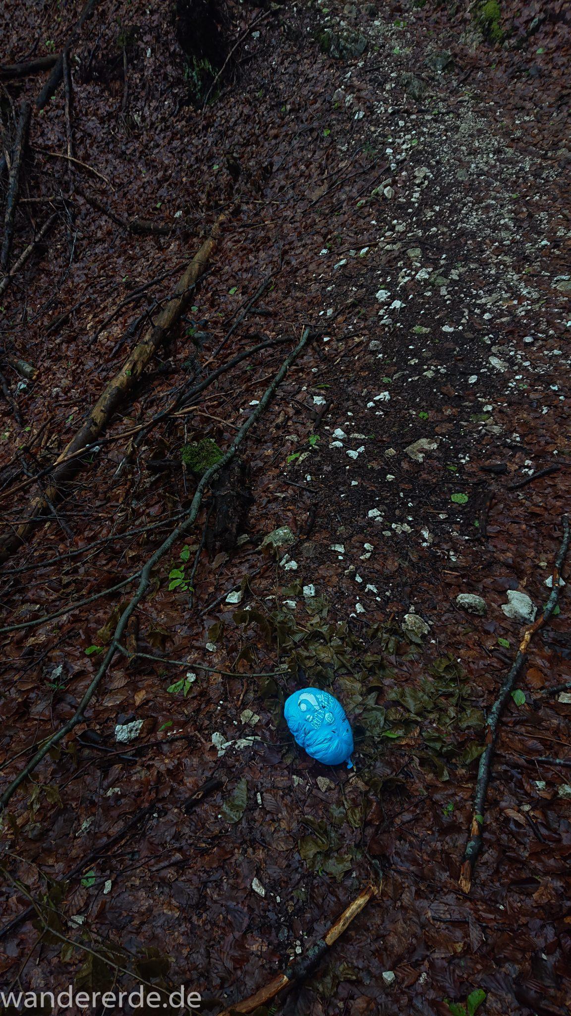 Wanderung beim Alpsee bei Hohenschwangau, Wanderweg durch Laubwald und Nadelwald, Frühling in Bayern, Resultat von Luftballon steigen lassen
