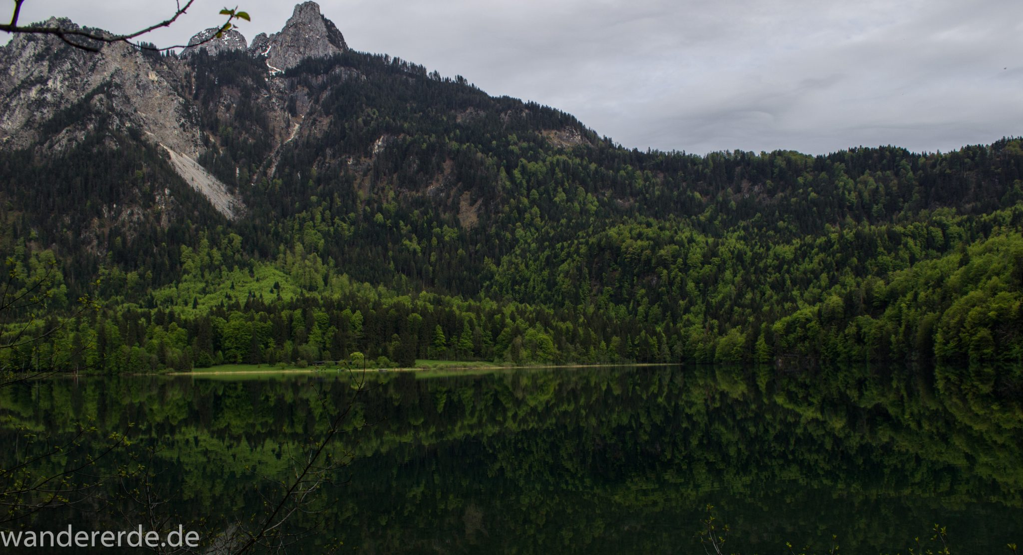 Alpsee bei Hohenschwangau, in der Nähe von Schloss Neuschwanstein, Aussicht auf Alpsee mit grünem Wald ringsrum, Laubbaum, Nadelbaum, dichte Bewölkung, Umgebung spiegelt sich im See, Bergkette