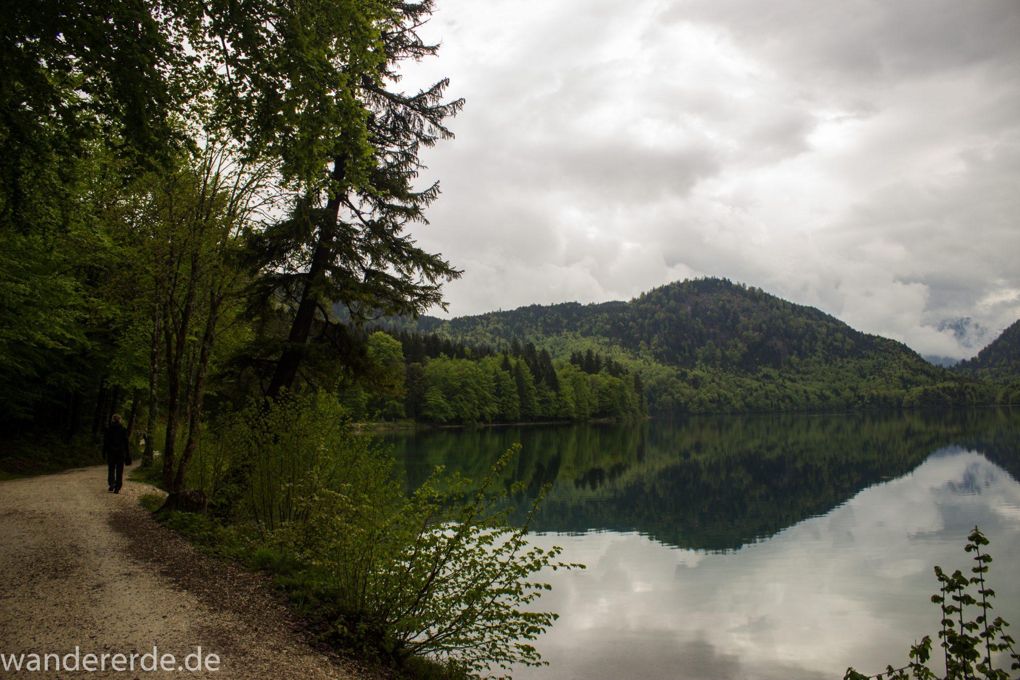 Alpsee bei Hohenschwangau, in der Nähe von Schloss Neuschwanstein, Aussicht auf Alpsee mit grünem Wald ringsrum, Laubbaum, Nadelbaum, dichte Bewölkung, Umgebung spiegelt sich im See, Rundwanderweg um den Alpsee