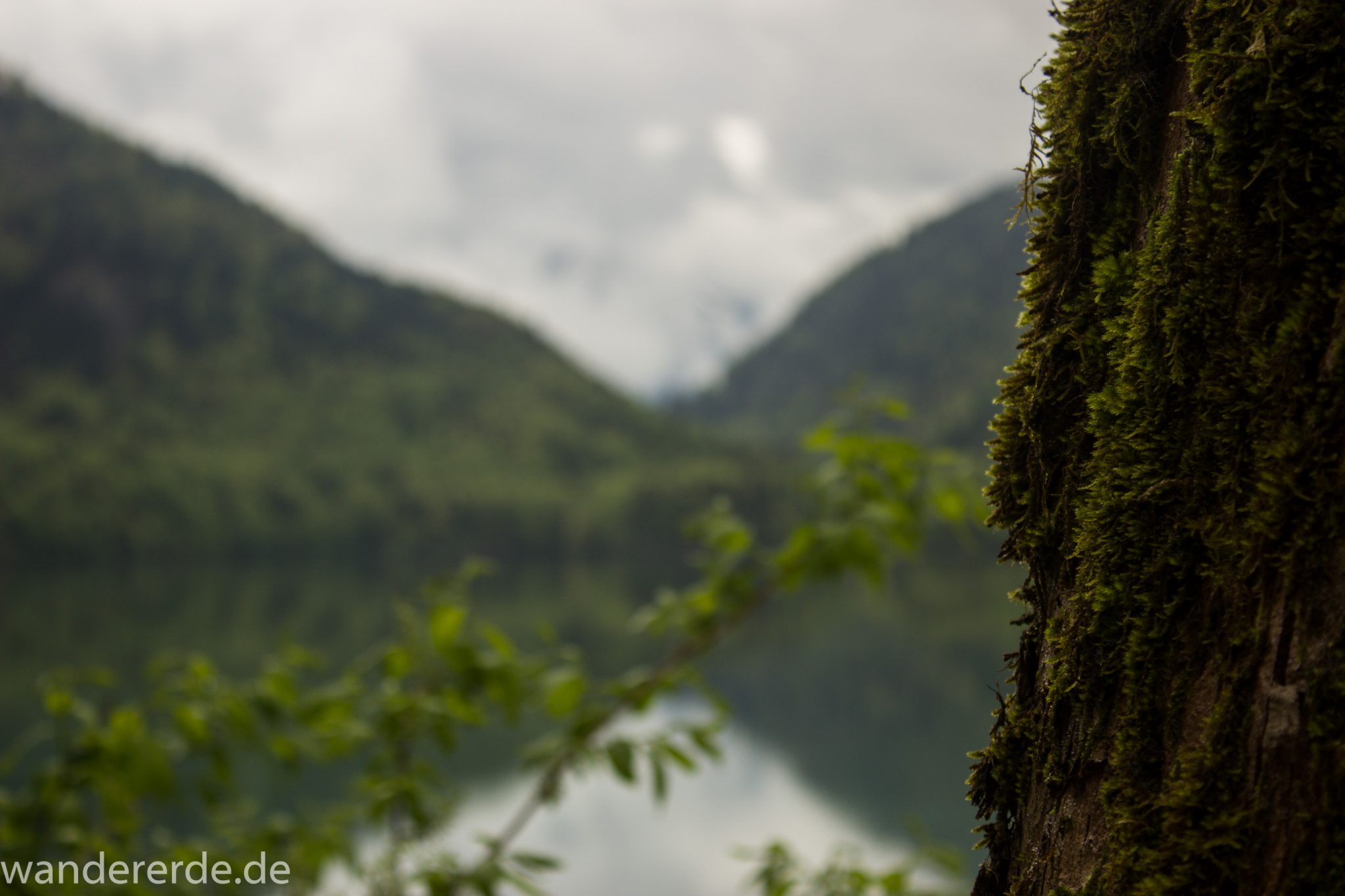 Wanderung beim Alpsee bei Hohenschwangau