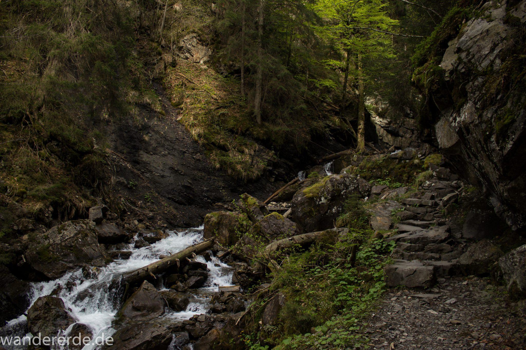Wanderung Unterer Gaisalpsee, über Tobelweg zurück nach Oberstdorf, schmaler Kiespfad beim Tobelweg, kleine Schlucht, über Brücken und Treppen, teils steil und felsig abwärts, umgeben von schönem dichtem Mischwald, abwechselungsreicher sehr toller Wanderweg am Wasser entlang
