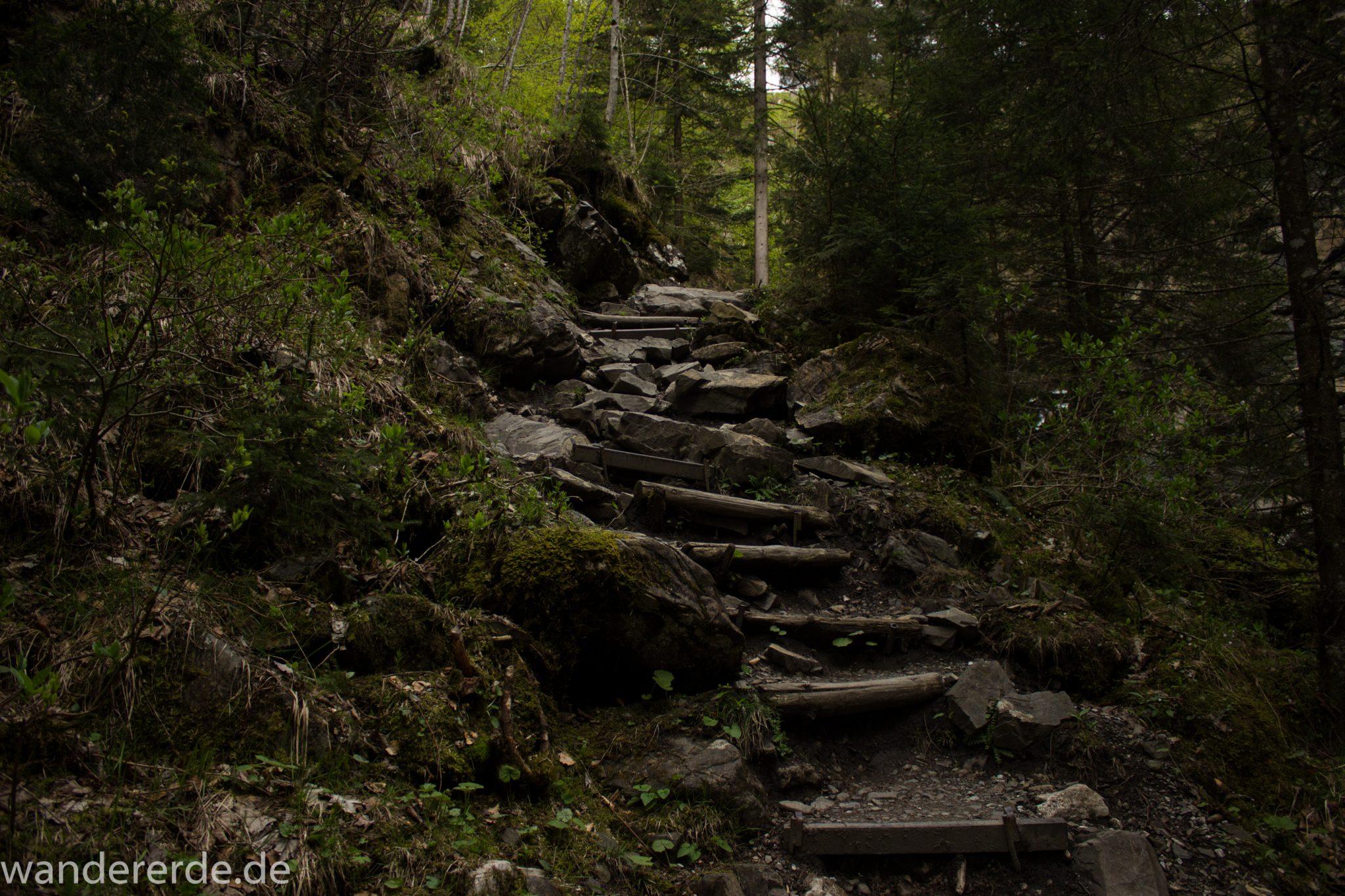 Wanderung Unterer Gaisalpsee, über Tobelweg zurück nach Oberstdorf, steile Treppe beim Tobelweg abwärts, umgeben von schönem dichtem Mischwald, abwechselungsreicher Wanderweg