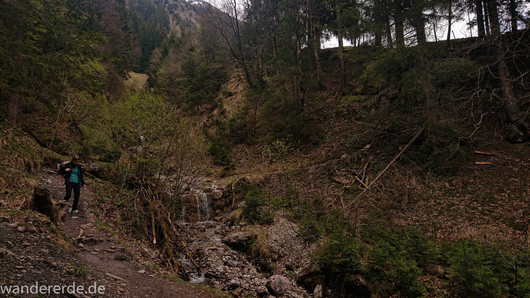 Wanderung Unterer Gaisalpsee, Wanderweg von Oberstdorf im Allgäu, schmalerer Kiespfad wird zunehmend steil und felsig, umgeben von schönem dichtem Mischwald, abwechselungsreicher Wanderweg von Oberstdorf zum Unteren Gaisalpsee