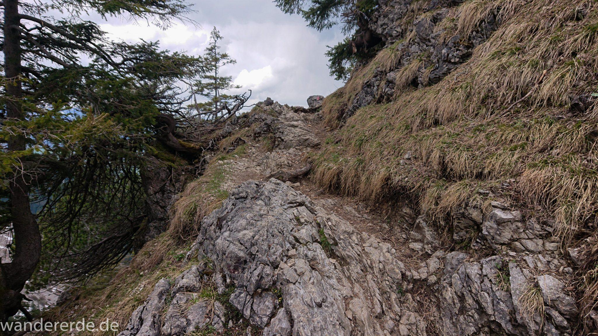 Wanderung Unterer Gaisalpsee, Wanderweg von Oberstdorf im Allgäu, Wanderpfad wird zunehmend schmaler, steil und felsig, teilweise sehr große Schritte notwendig um auf nächsten Fels zu kommen, weniger Bäume