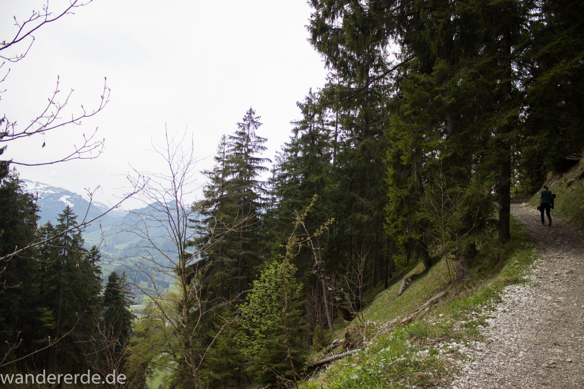 Wanderung Unterer Gaisalpsee, Wanderweg von Oberstdorf im Allgäu, schmalerer Kiespfad wird zunehmend steil und felsig, umgeben von schönem dichtem Mischwald, Blick auf Allgäuer Berge