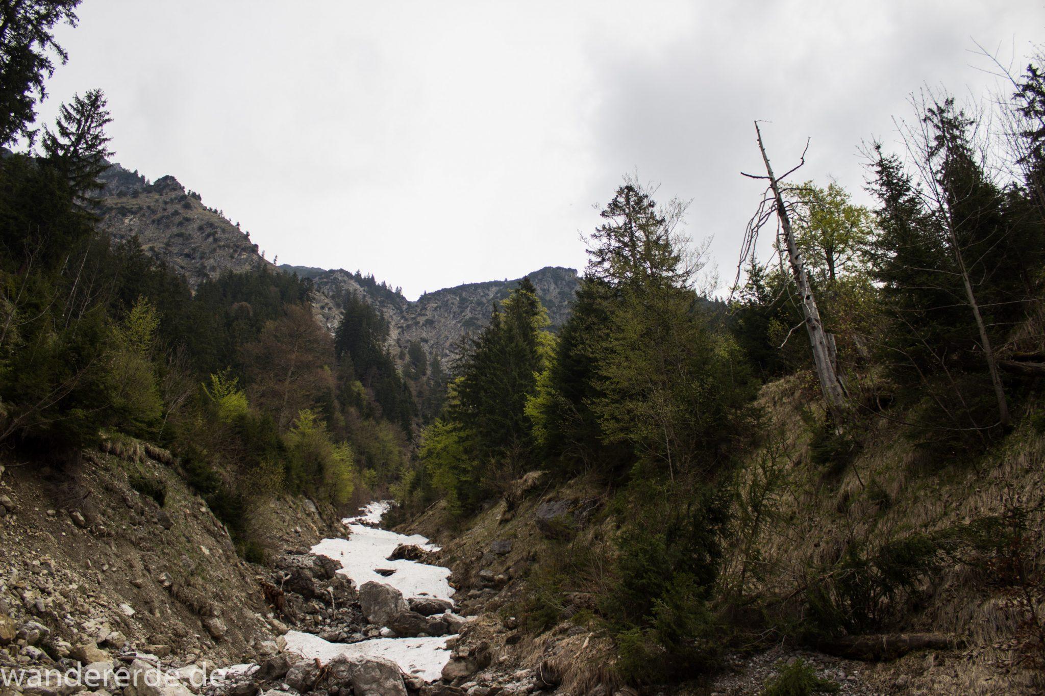 Wanderung Unterer Gaisalpsee, Wanderweg von Oberstdorf im Allgäu, schmalerer Kiespfad wird zunehmend steil und felsig, umgeben von schönem dichtem Mischwald, in unteren Lagen liegt noch Schnee Mitte Mai, Blick auf Allgäuer Berge