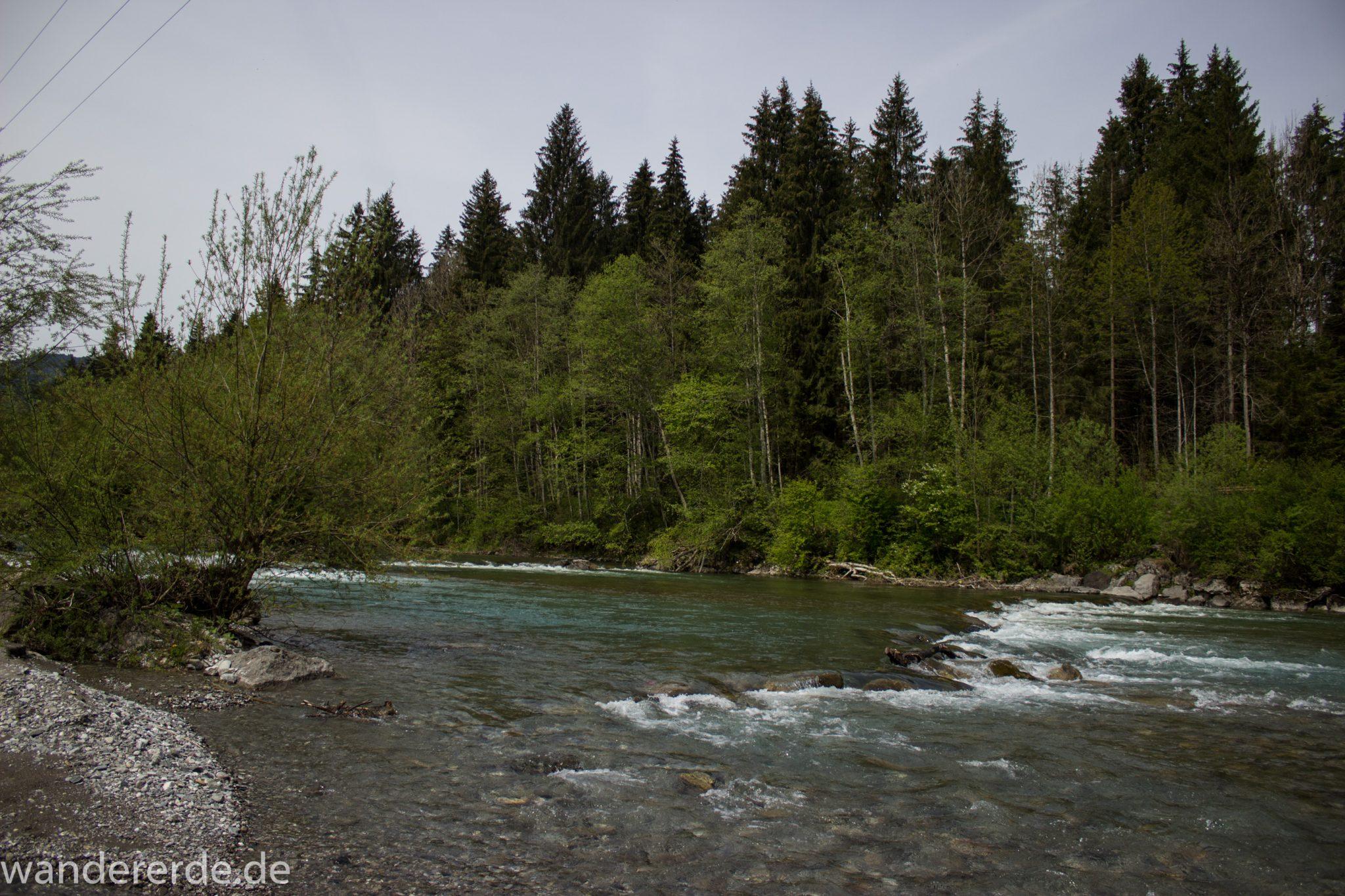 Wanderung Unterer Gaisalpsee, Wanderweg führt entlang am Fluss Iller, umgeben von schönem dichten Laubwald, Abschnitt von Fischen im Allgäu nach Oberstdorf