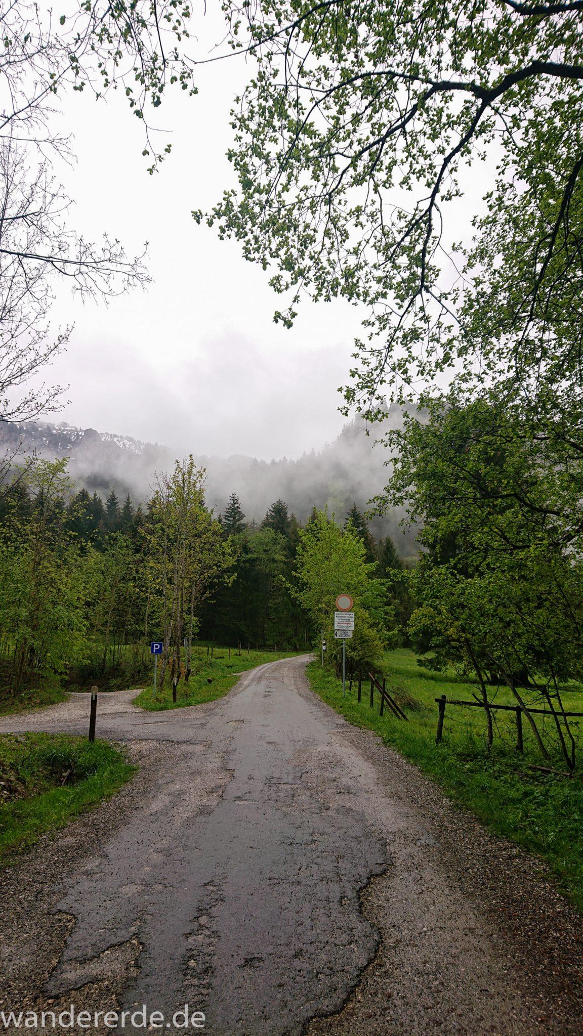 Tegelbergkopf Wanderung bei Stadt Füssen – Parkplatz Drehhütte bis Rohrkopfhütte, Start der Wanderung beim Parkplatz Drehhütte, dichte Wolken, regnerisch, dichter grüner Wald