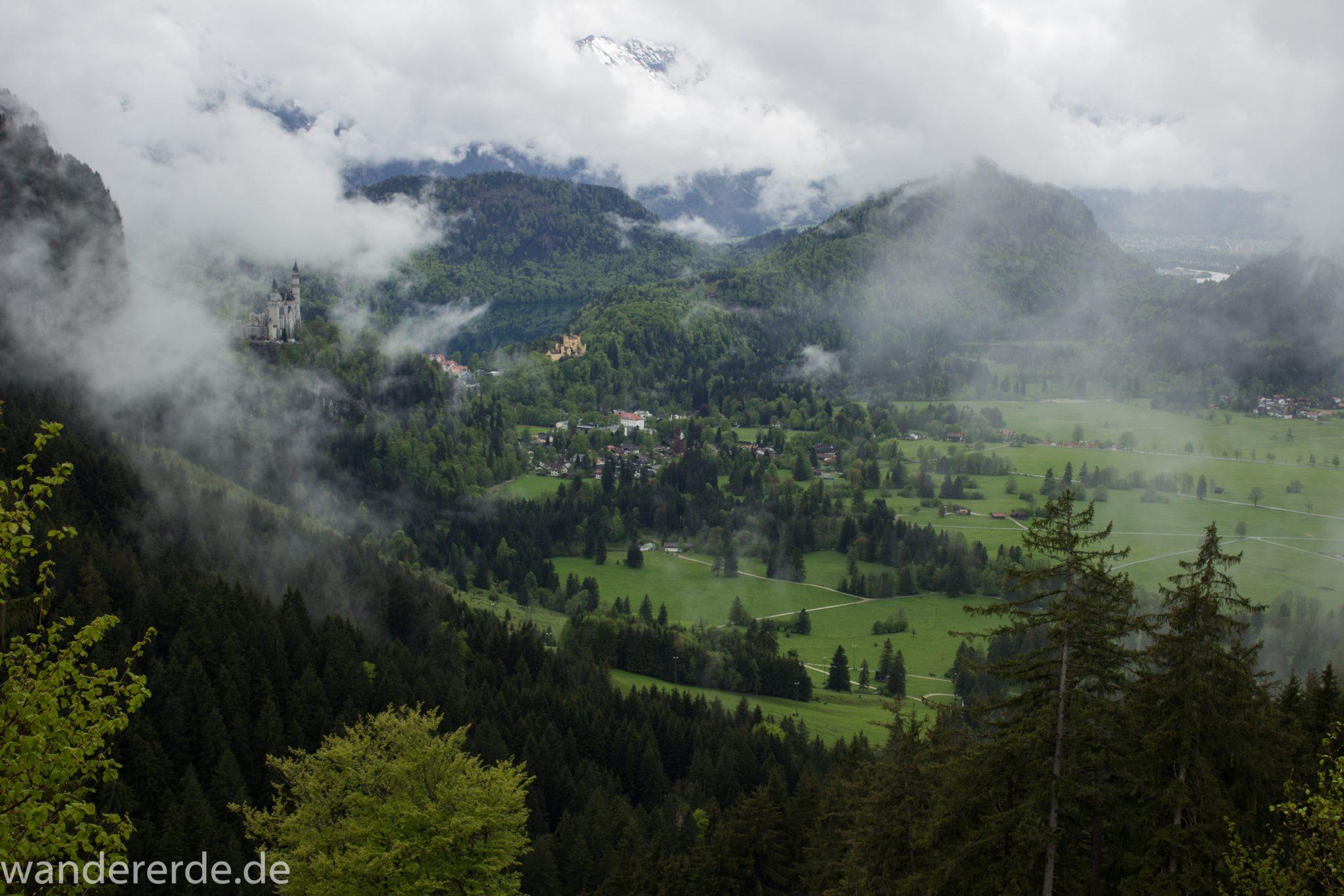 Wandern beim Tegelberg, Tegelbergkopf Wanderung bei Stadt Füssen, Parkplatz Drehhütte bis Rohrkopfhütte, Aussicht auf mächtige Bergkette, Nadelbaum, Wiese, schneebedeckte Gipfel in der Ferne, Königsschlösser, Hohenschwangau, Blick auf Schloß Neuschwanstein, See, schöne Aussicht