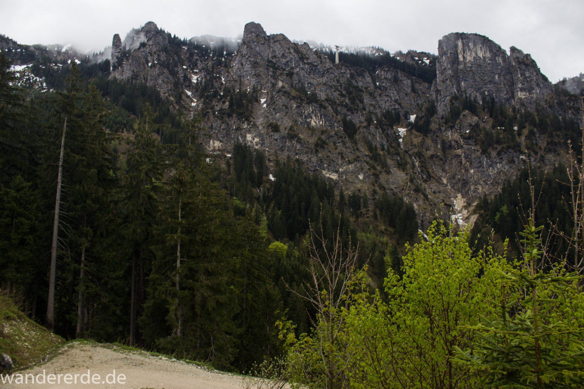 Wandern beim Tegelberg, Stadt Füssen, Parkplatz Drehhütte bis Rohrkopfhütte, Aussicht auf mächtige Bergkette, Nadelbaum, Wiese, schneebedeckte Gipfel in der Ferne, schöne Aussicht, dichter grüner Wald
