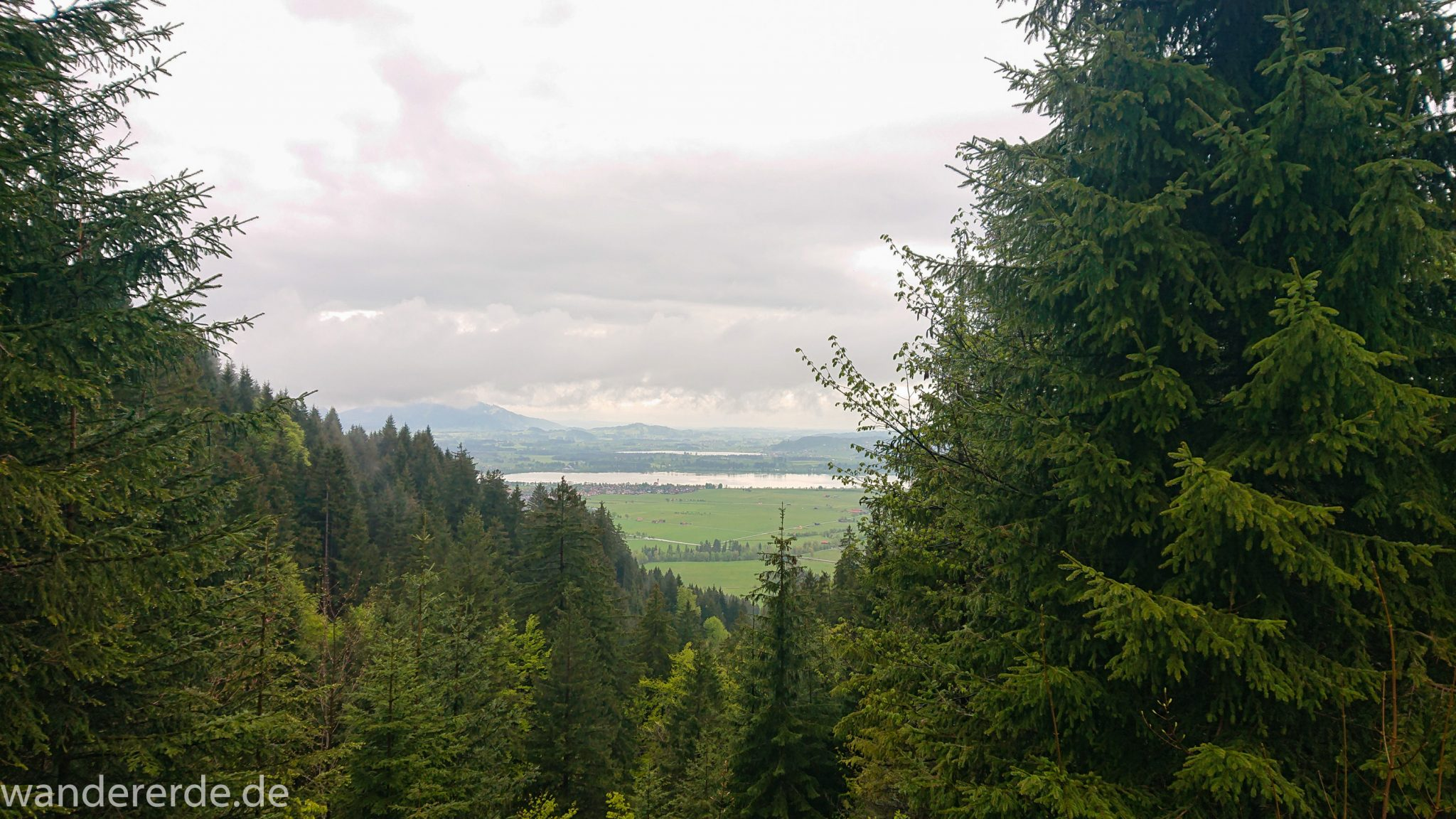 Tegelbergkopf Wanderung bei Stadt Füssen – Parkplatz Drehhütte bis Rohrkopfhütte, toller Wanderweg, schöner und dichten Wald, wolkig, tolle Atmosphäre, saftig grüne Wiese, Berge und weite Aussicht
