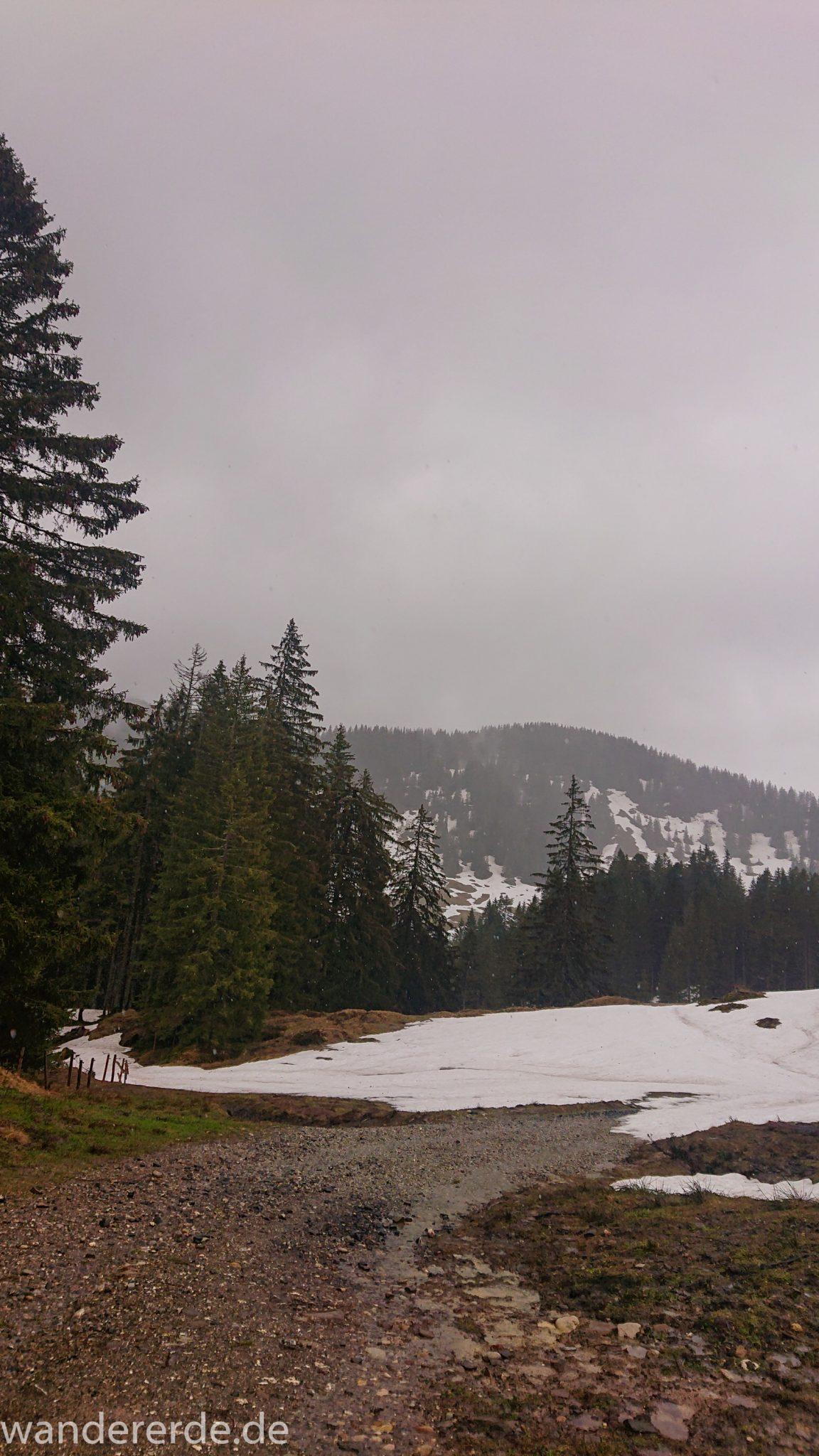 Wandern Gunzesrieder Ostertal im Allgäu, Baden-Württemberg, Obere Älple, viel Regen, dunkle Wolken, Schnee im Mai, saftig grüner Wald, Wanderweg unter Schnee, schöne Atmosphäre und Aussicht