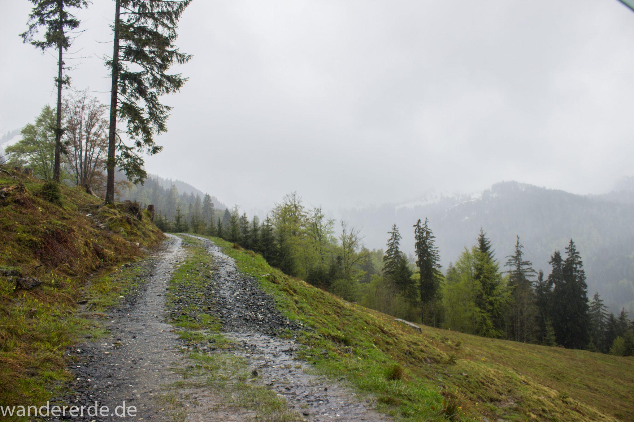 Wandern Gunzesrieder Ostertal im Allgäu, Baden-Württemberg, Obere Älple, viel Regen, dunkle Wolken, saftig grüner Wald, Wanderweg Kieselstraße, schöne Atmosphäre und Aussicht