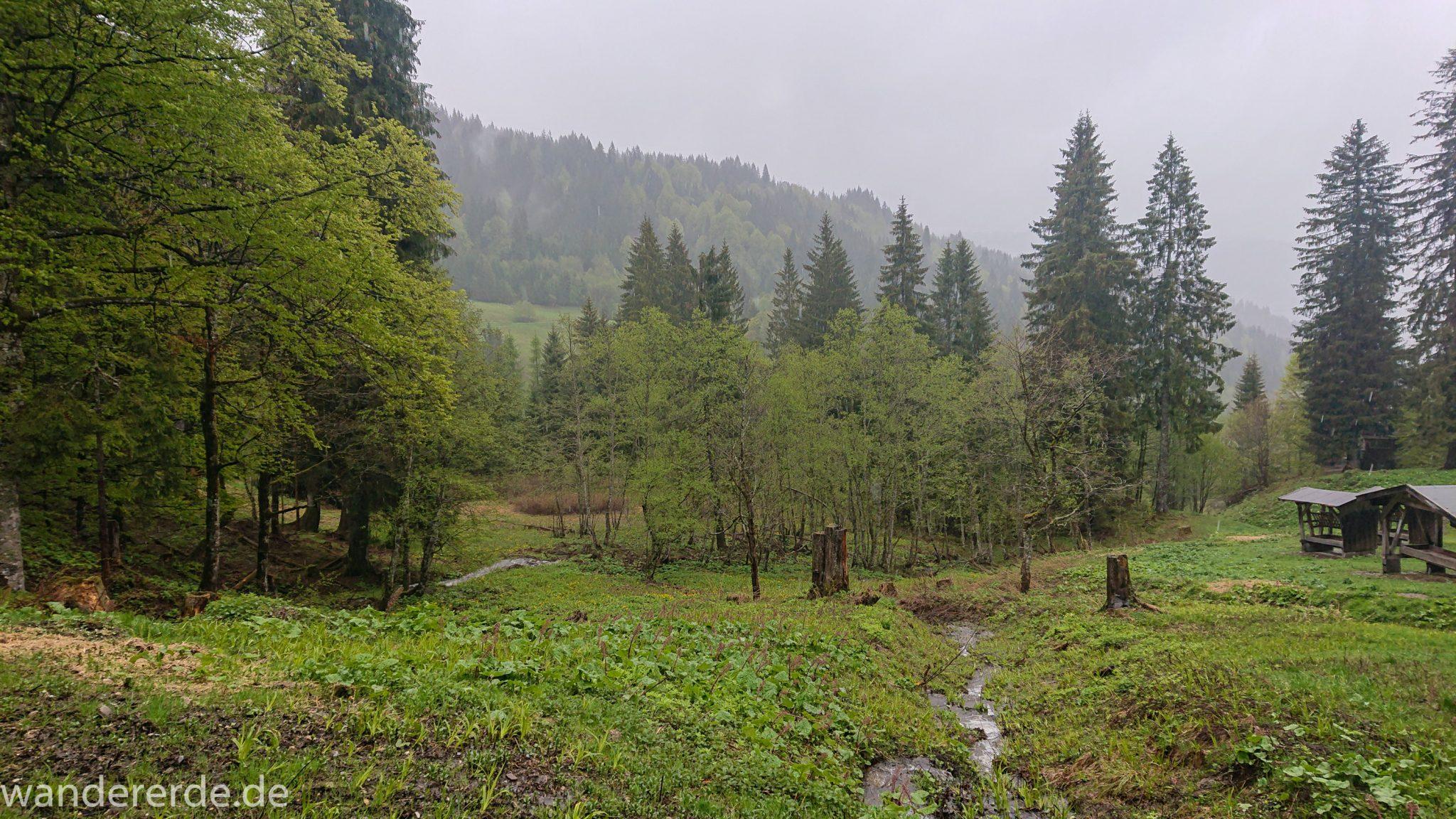 Wandern Gunzesrieder Ostertal im Allgäu, Baden-Württemberg, Obere Älple, viel Regen, dunkle Wolken, saftig grüne Wiesen und schöner Wald, Bach füllt sich durch viel Regen