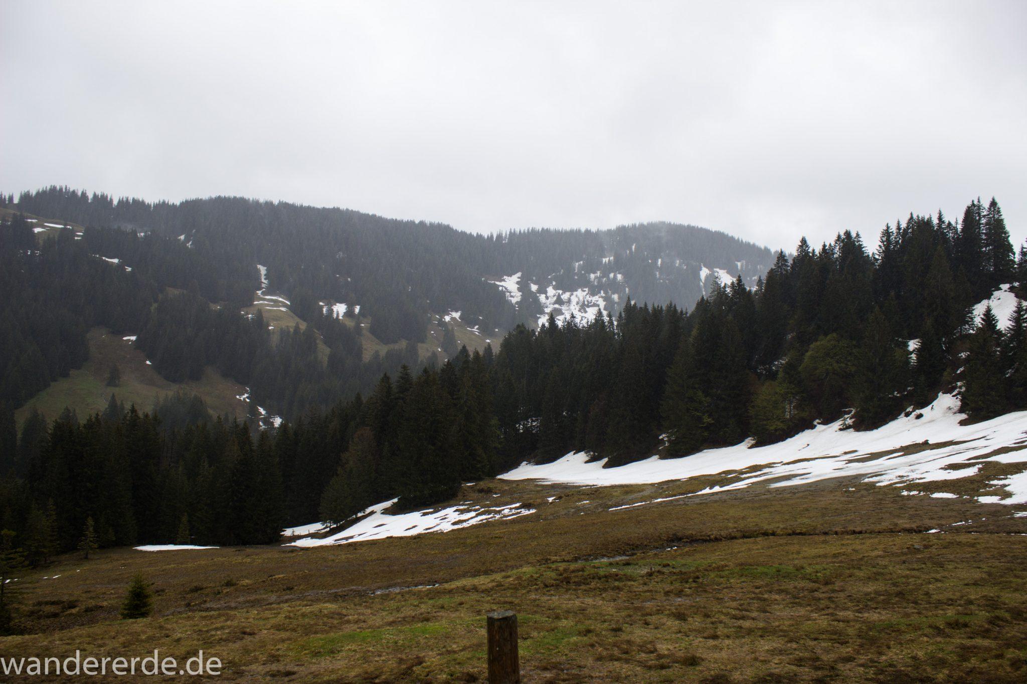 Wandern Gunzesrieder Ostertal im Allgäu, Baden-Württemberg, Obere Älple, viel Regen, dunkle Wolken, Schnee im Mai, saftig grüner Wald