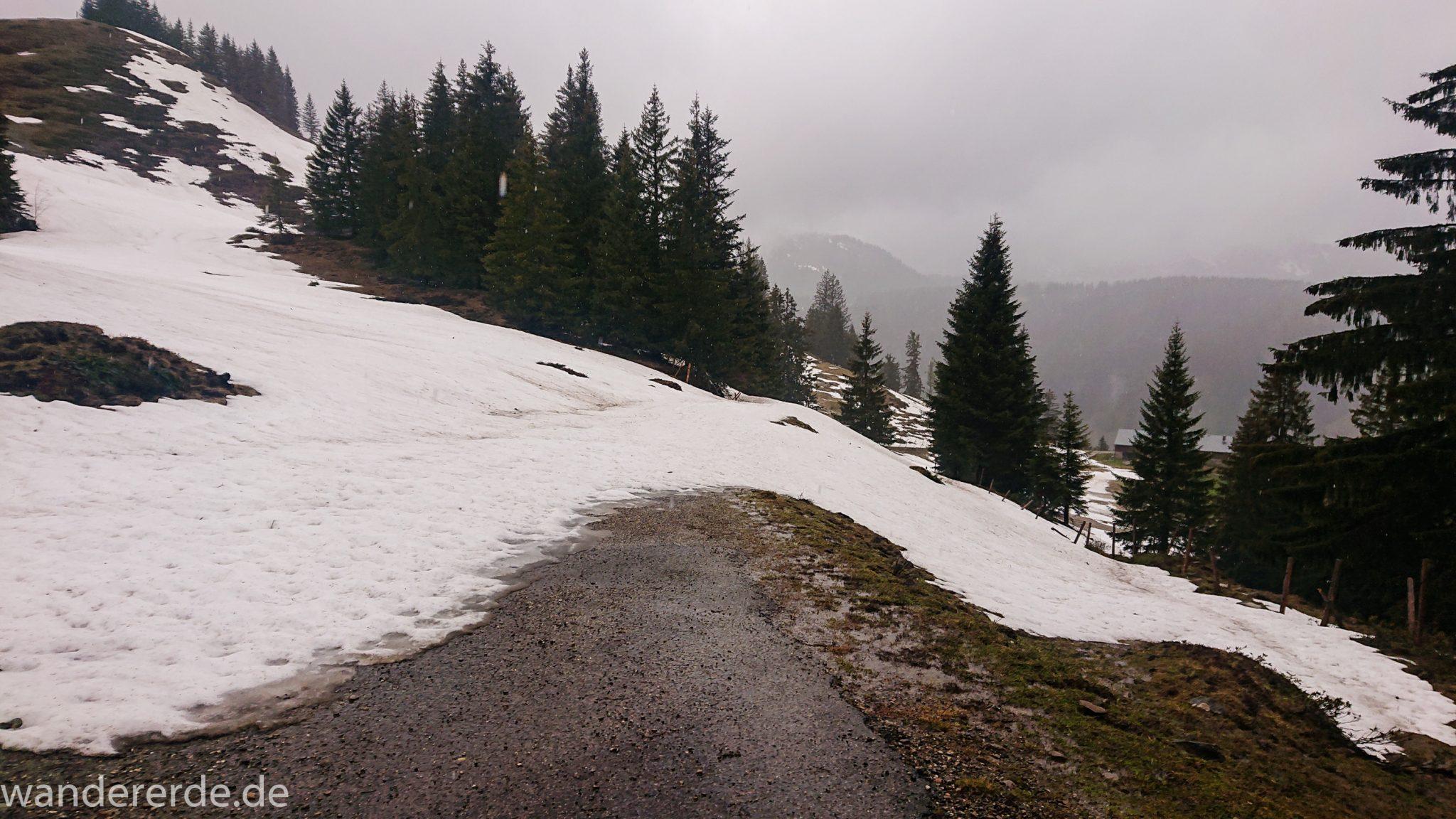 Wandern Gunzesrieder Ostertal im Allgäu, Baden-Württemberg, Obere Älple, viel Regen, dunkle Wolken, Schnee im Mai, saftig grüner Wald, Wanderweg unter Schnee