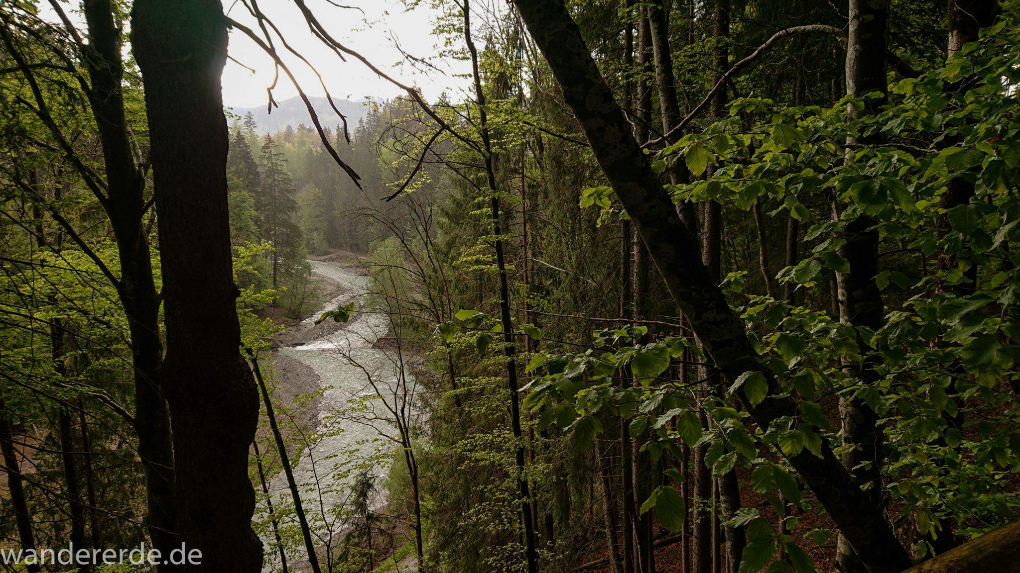 Wanderung im Oytal bei Oberstdorf im Allgäu, Bayern, Wanderung Richtung Oberstdorf über den Kühberg, sehr schöne Atmosphäre bei einsetzendem Regen, Aussicht auf Fluß Trettach im Tal, saftig grüne und dichte Wälder im Trettachtal