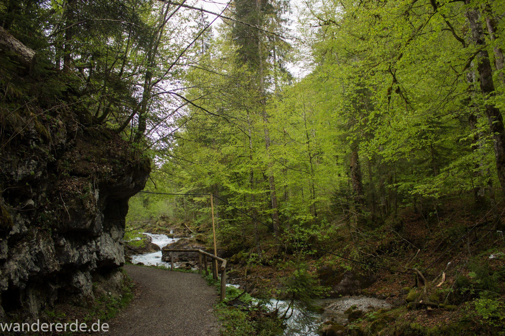 Wanderung im Oytal bei Oberstdorf im Allgäu, Bayern, schöner dichter und grüner Wald umgibt den Oybach im Oytal, Felsen säumen den Wanderweg, sehr schöne Atmosphäre
