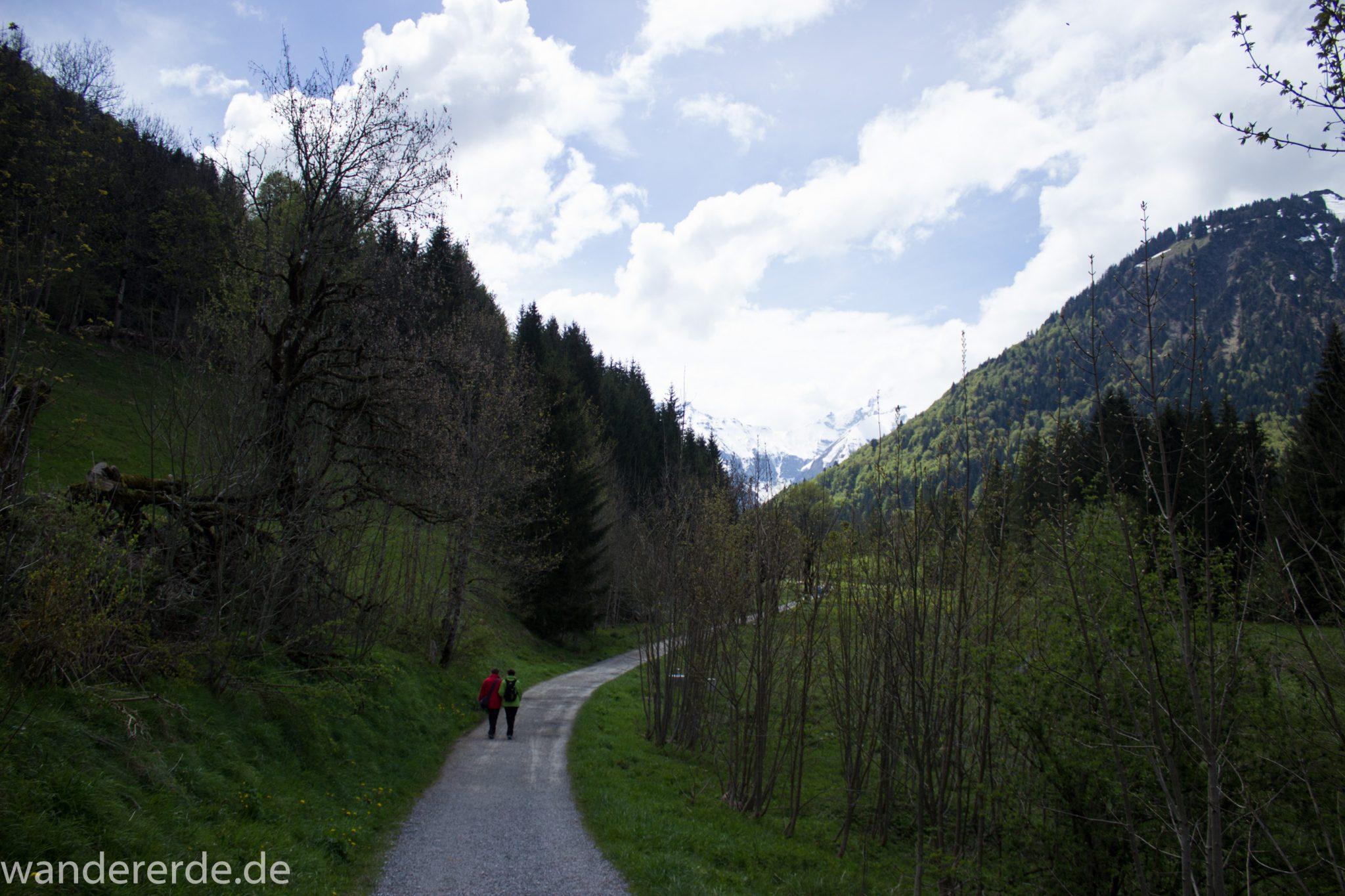Wanderung Oberstdorf nach Gerstruben im Allgäu, Bayern, Wanderweg durch das Trettachtal, Aussicht auf Berge, Ufer mit schönen Bäumen, sattgrüner Wald, Frühling in den Bergen