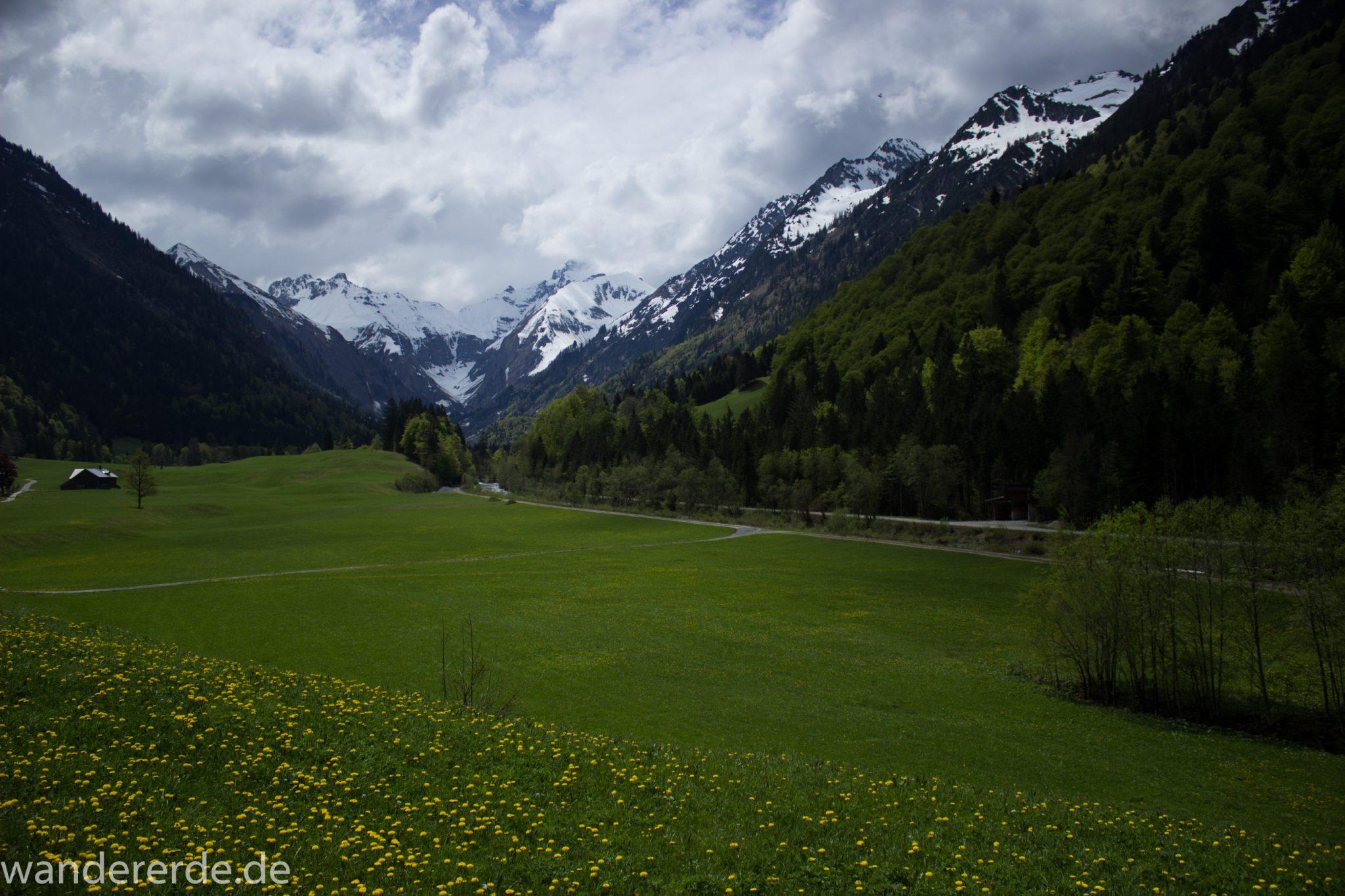 Wanderung Oberstdorf nach Gerstruben im Allgäu, Bayern, Wanderweg durch das Trettachtal, Aussicht auf schneebedeckte Berge, Ufer mit schönen Bäumen, sattgrüne Wiesen und Wälder, Frühling in den Bergen