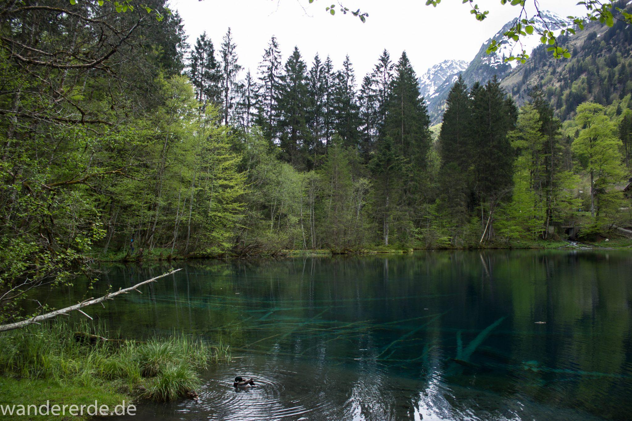 Wanderung Oberstdorf nach Gerstruben im Allgäu, Bayern, Wanderweg durch das Trettachtal zum Christlessee, kristallklares Wasser im kleinen See, Aussicht auf umliegende Berge, Ufer mit schönen Bäumen, sattgrüne Wälder, Frühling in den Bergen