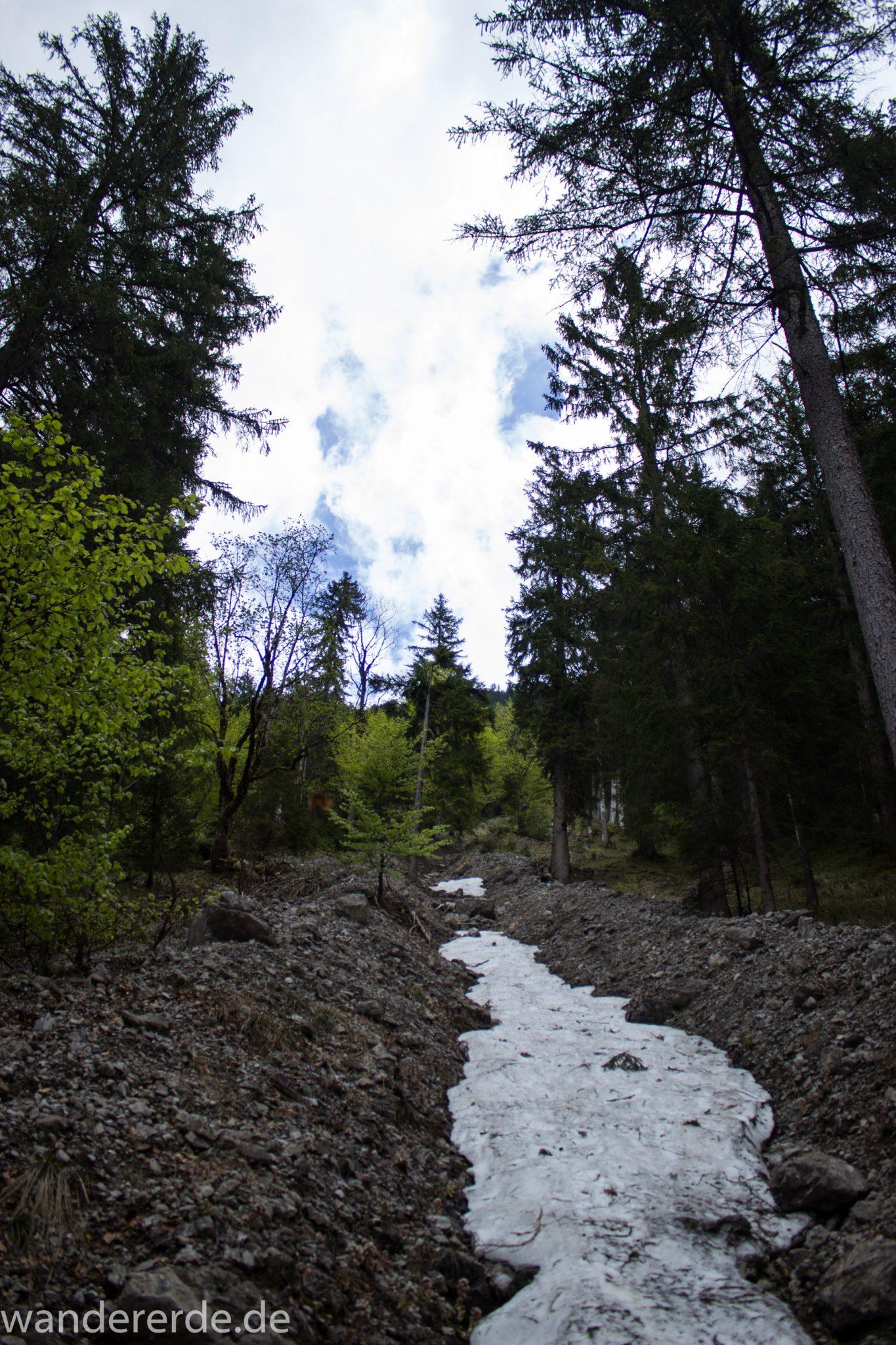 Wanderung Oberstdorf nach Gerstruben im Allgäu, Bayern, Wanderweg Rautweg führt durch schönen dichten Wald, ziemlich steil, kaum noch Menschen begegnen uns, teilweise Schneefelder im Frühjahr in den Bergen, schöner sattgrüner und dichter Wald