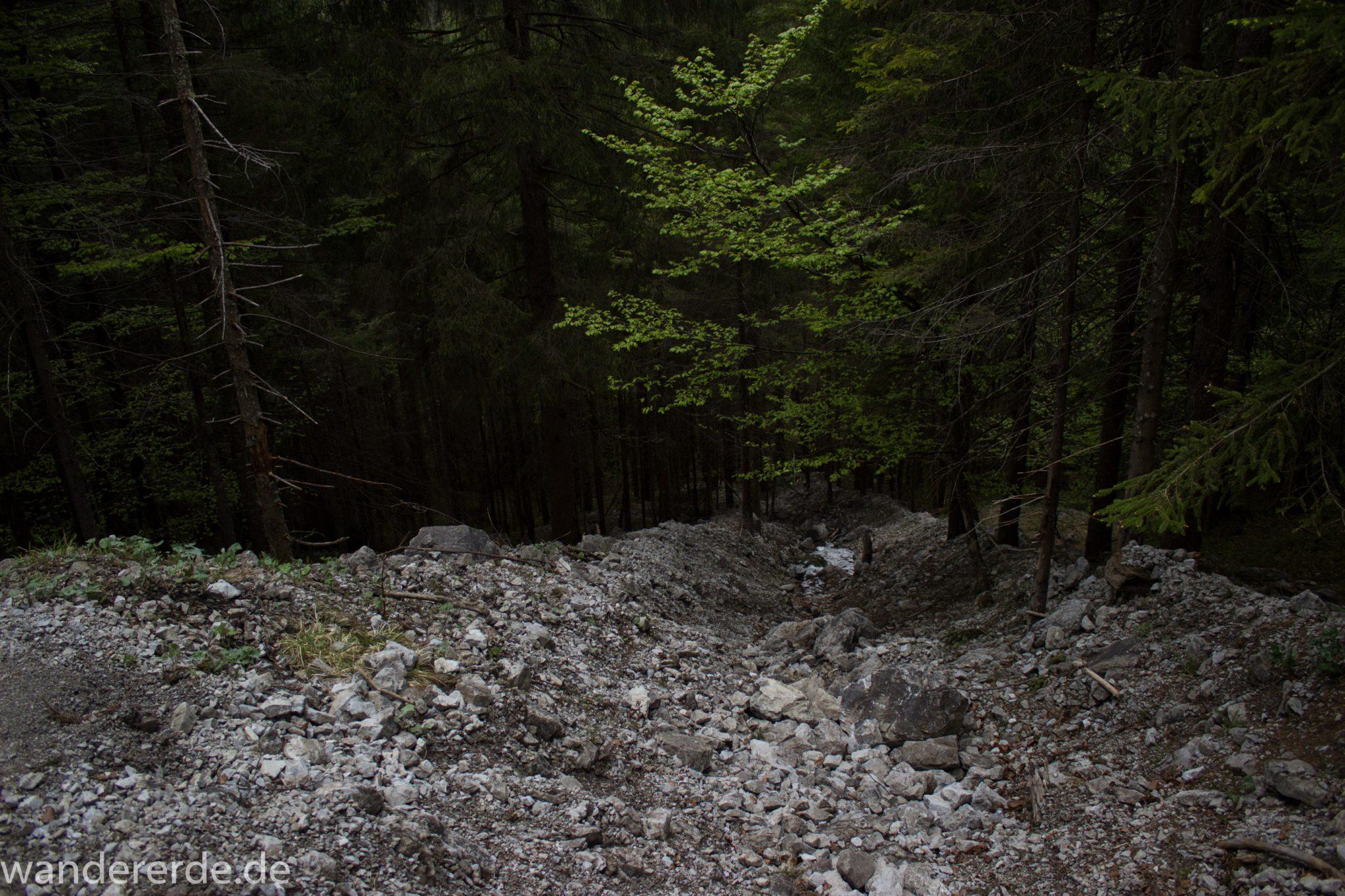 Wanderung Oberstdorf nach Gerstruben im Allgäu, Bayern, Wanderweg Rautweg führt durch schönen dichten Wald, ziemlich steiler und grober Weg, feste Schuhe empfehlenswert, kaum noch Menschen begegnen uns, teilweise Schneefelder im Frühjahr in den Bergen, schöner sattgrüner und dichter Wald