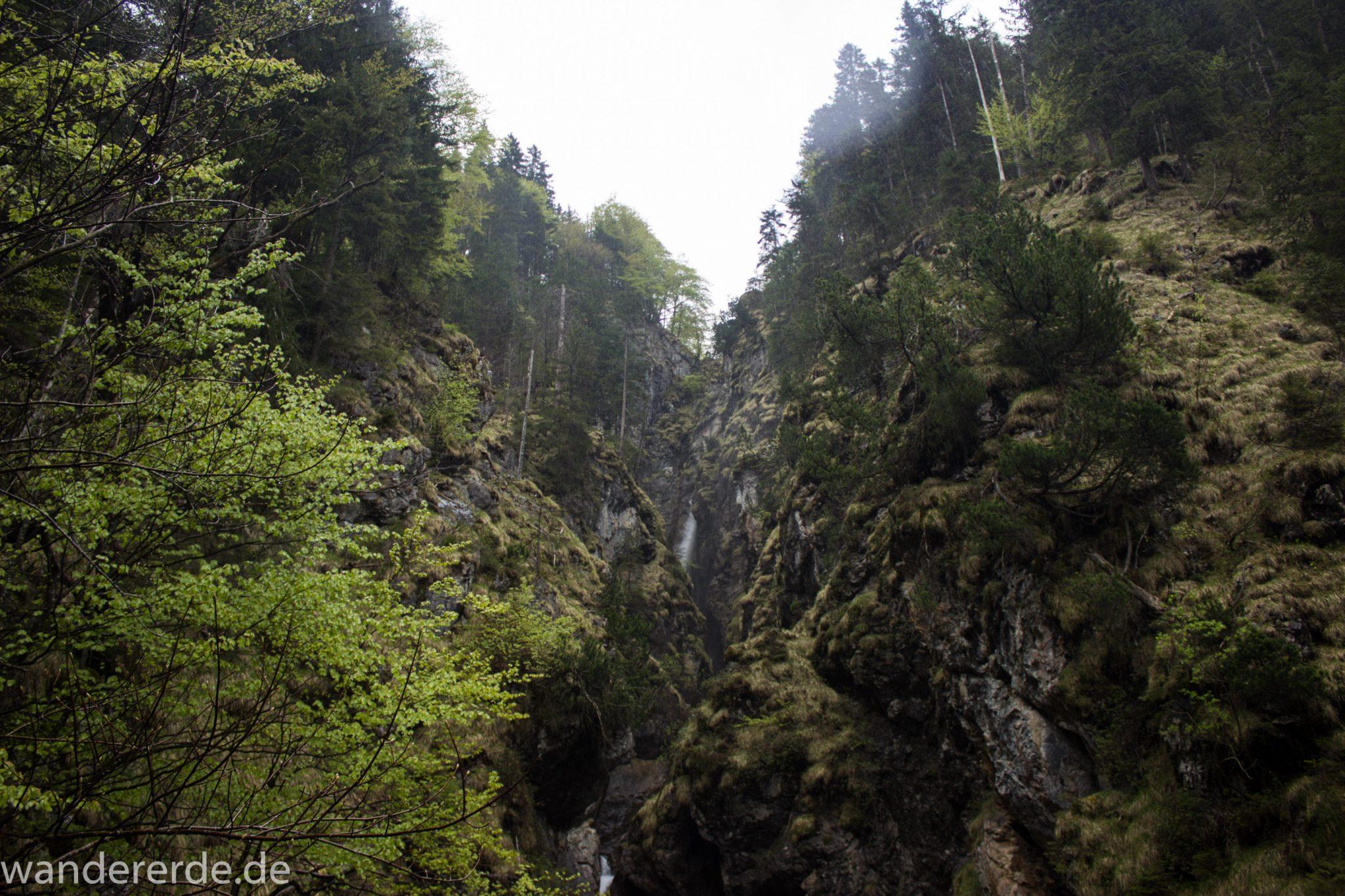 Wanderung Oberstdorf nach Gerstruben im Allgäu, Bayern, Wanderweg führt nach Bergbauerndorf Gerstruben über sehr empfehlenswerten aber steilen Weg Hölltobel mit Wasserfällen wieder abwärts, Aussicht auf Wasserfall in der Ferne